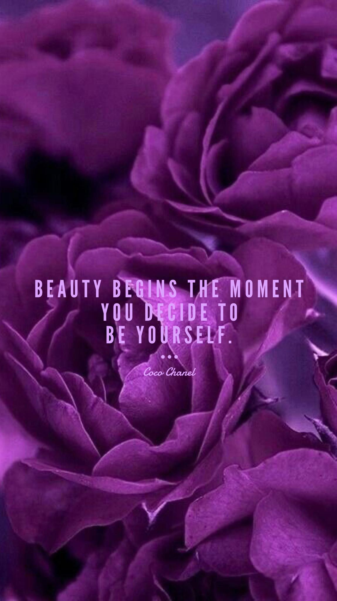 Violet Rose Wallpaper (60+ images)