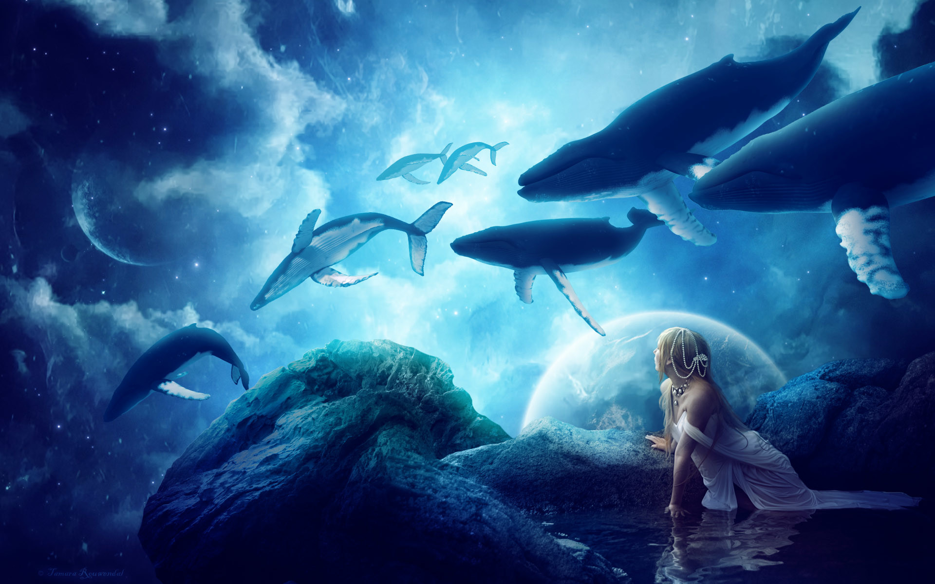 1920x1200 Whales Dream Wallpapers | HD Wallpapers | ID #13149