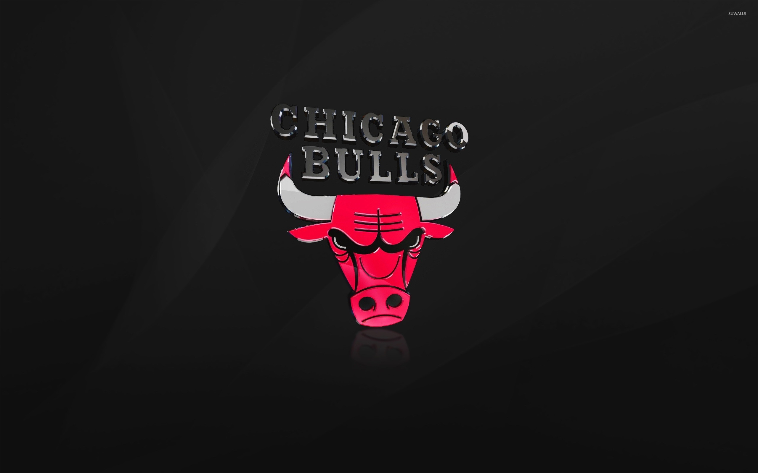 2560x1600 Shiny Chicago Bulls logo wallpaper