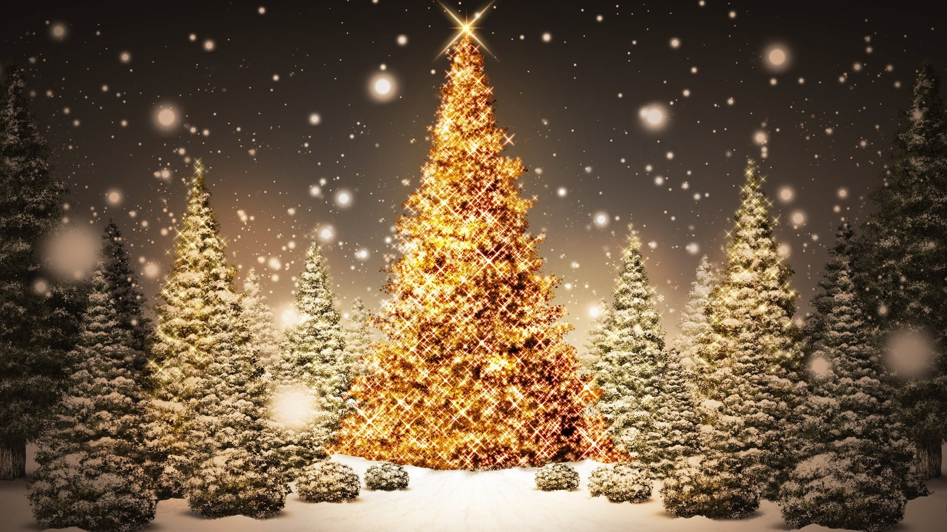 1920x1080 Christmas Tree Wallpapers. 16 HD Christmas Tree Desktop Wallpapers For Free  Download. christmas