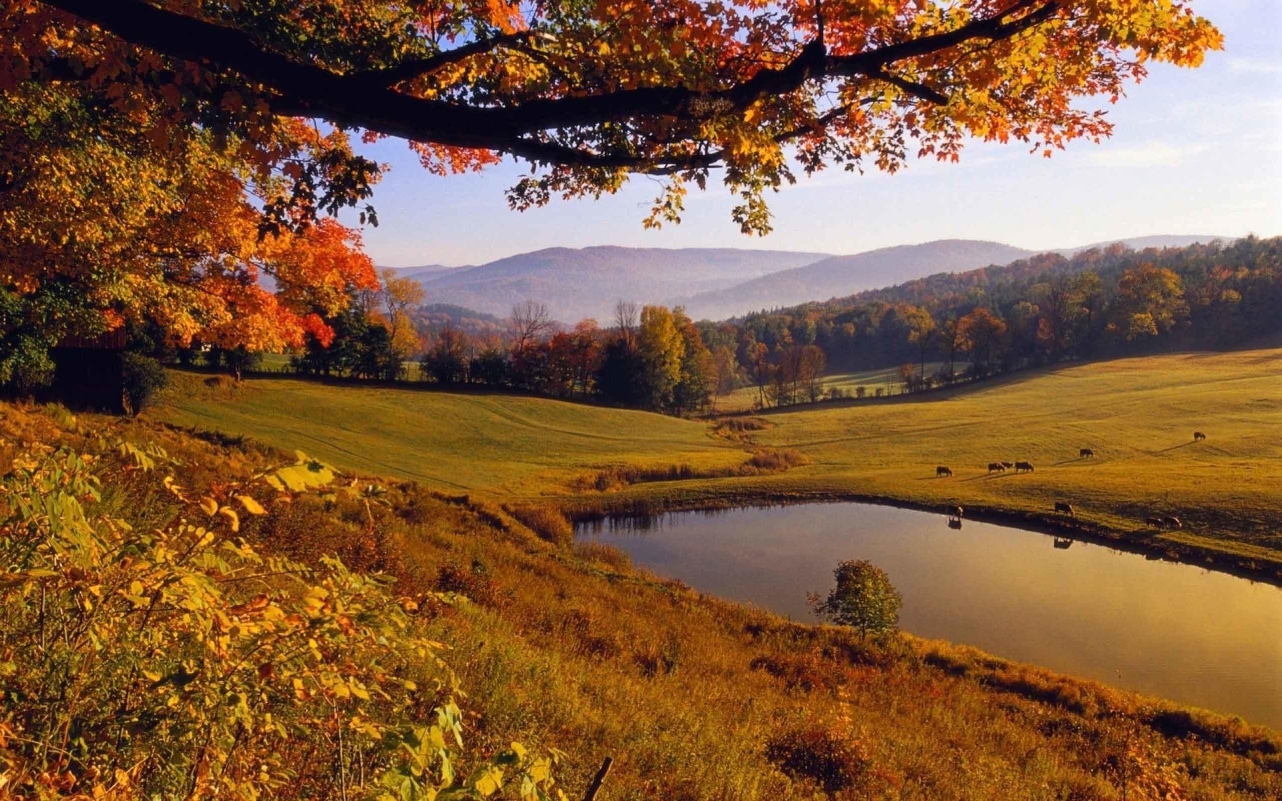 Autumn Landscape Wallpaper 69 Images
