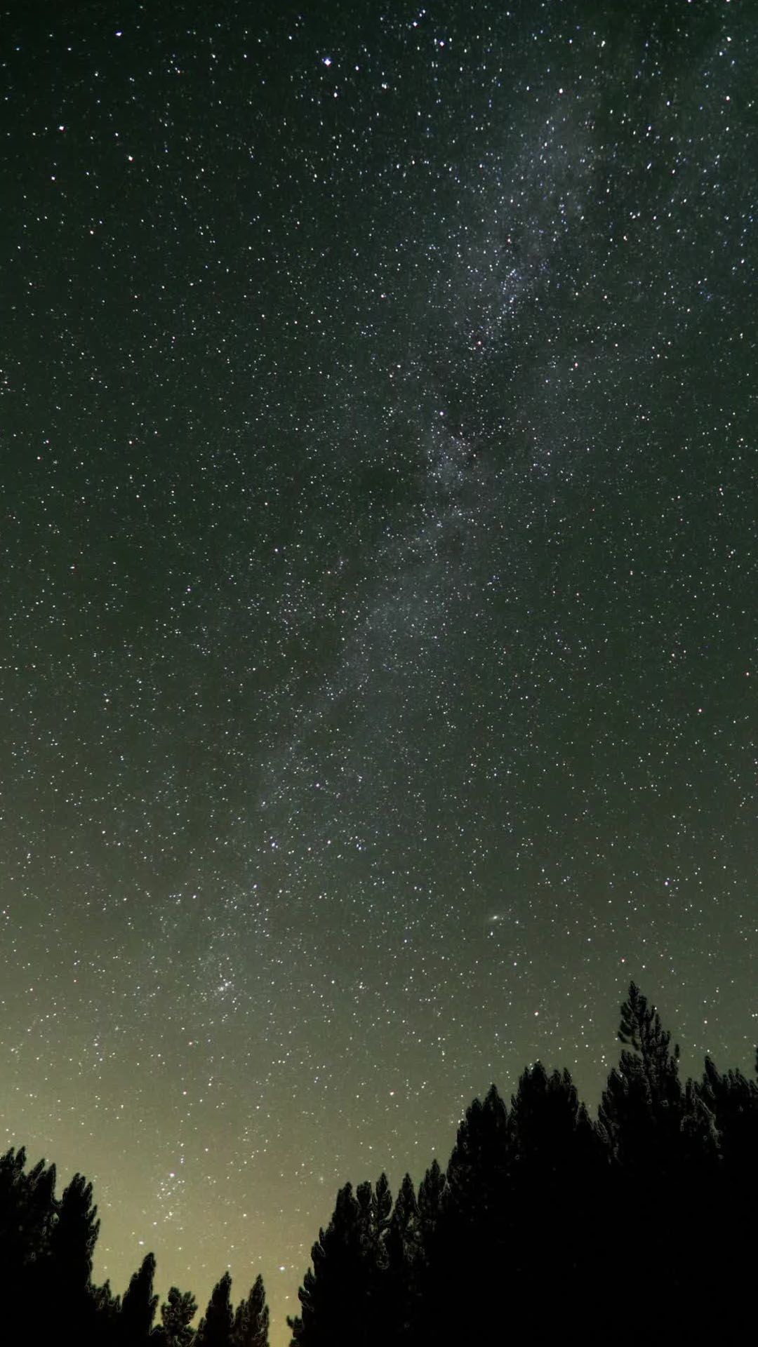 1080x1920 forest, Camping, Starry Night, Trees, Milky Way, Long Exposure .. Wallpapers  ...