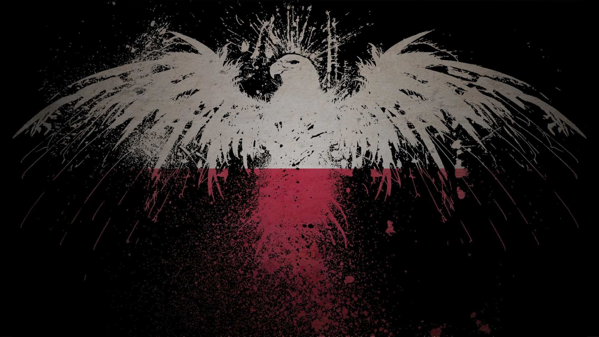 1920x1080 Eagles flags Polish Poland artwork White Eagle wallpaper |  |  311962 | WallpaperUP
