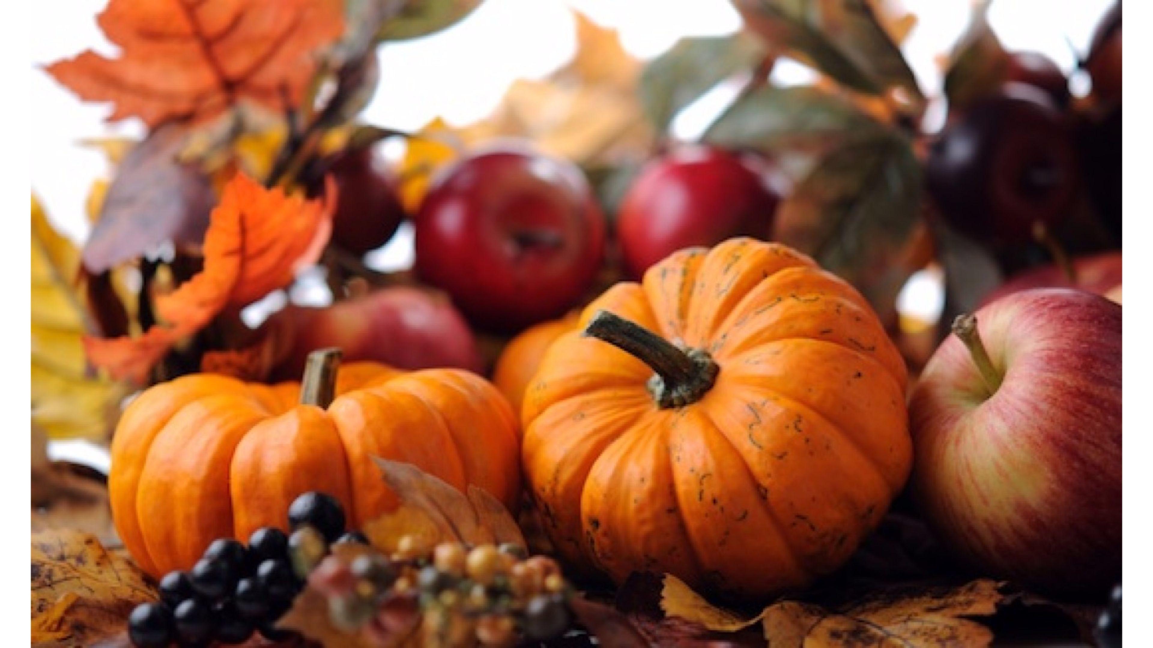 Fall wallpaper backgrounds with pumpkins 55 images - Fall wallpaper pumpkins ...
