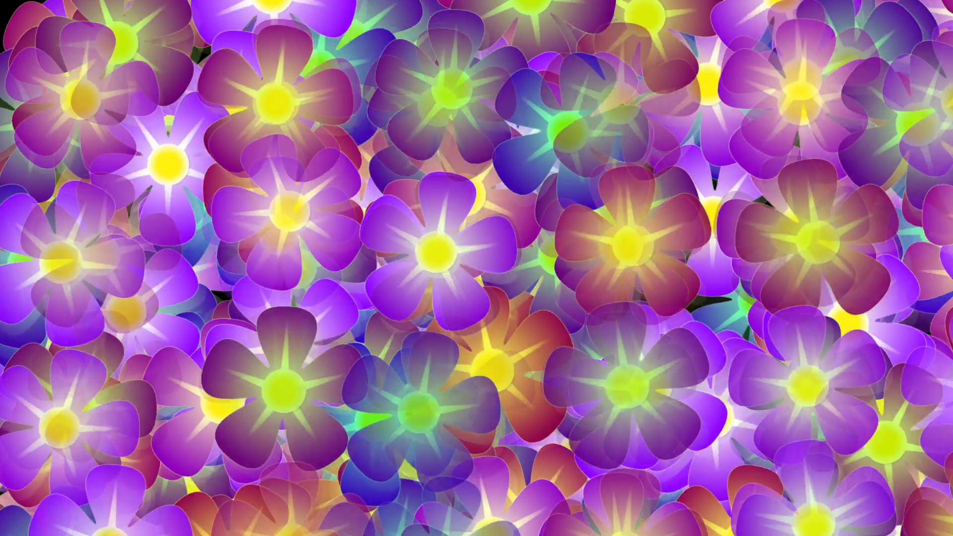 1920x1080 Hippie Flowers Shaking Background - 1080p Motion Background - VideoBlocks