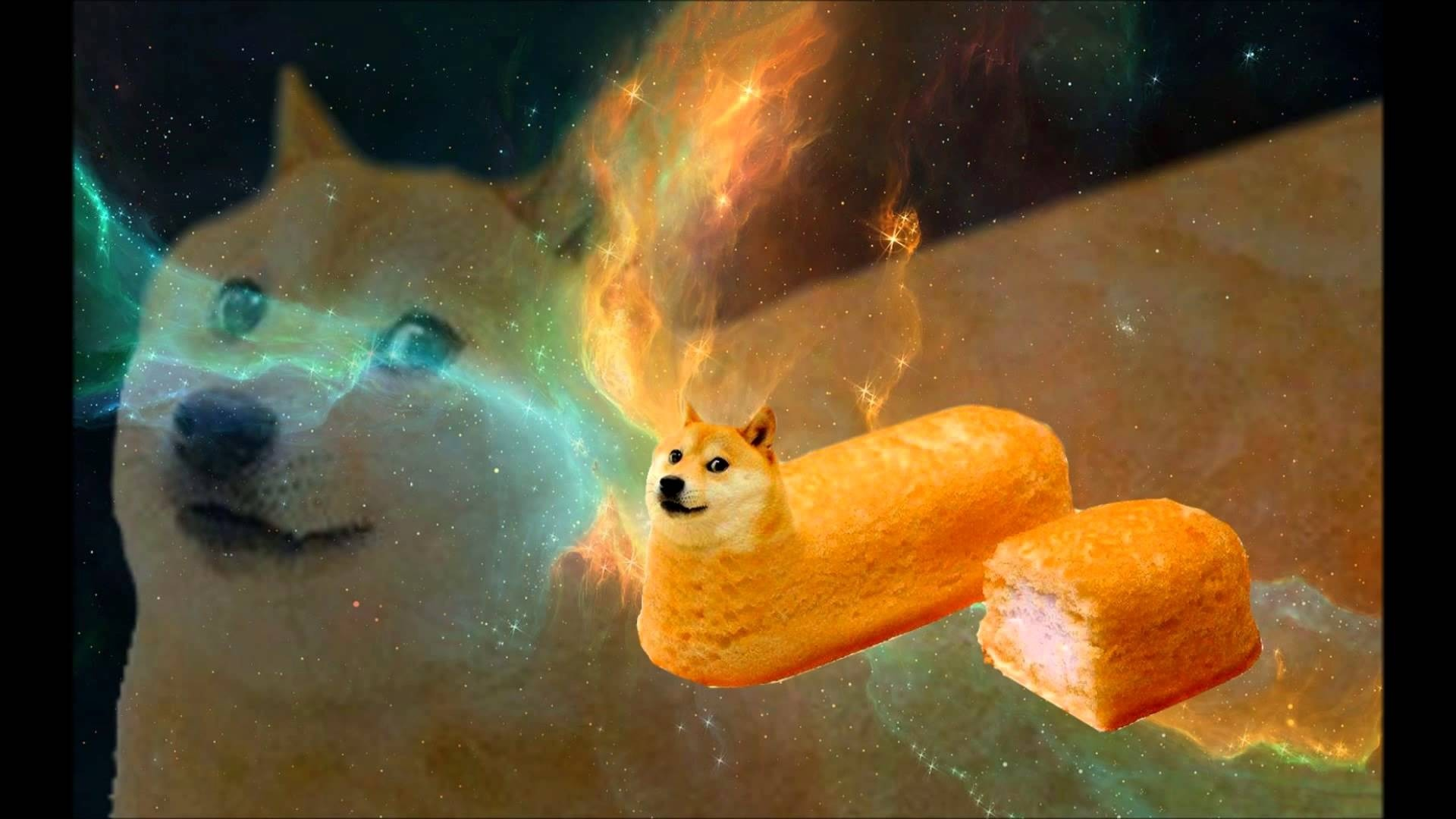 1920x1080 Doge Wallpaper (31 Wallpapers)