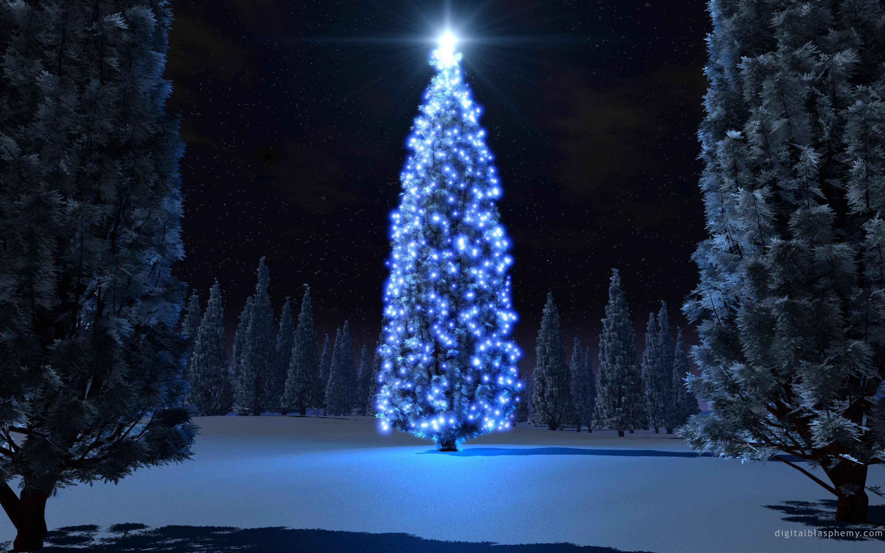 2880x1800 Beautiful Christmas Trees and Starlight Photo Gallery HD Wallpaper  Widescreen