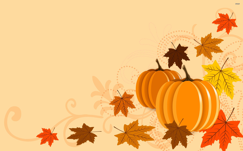 Pumpkin And Fall Flower Wallpaper 45 Images