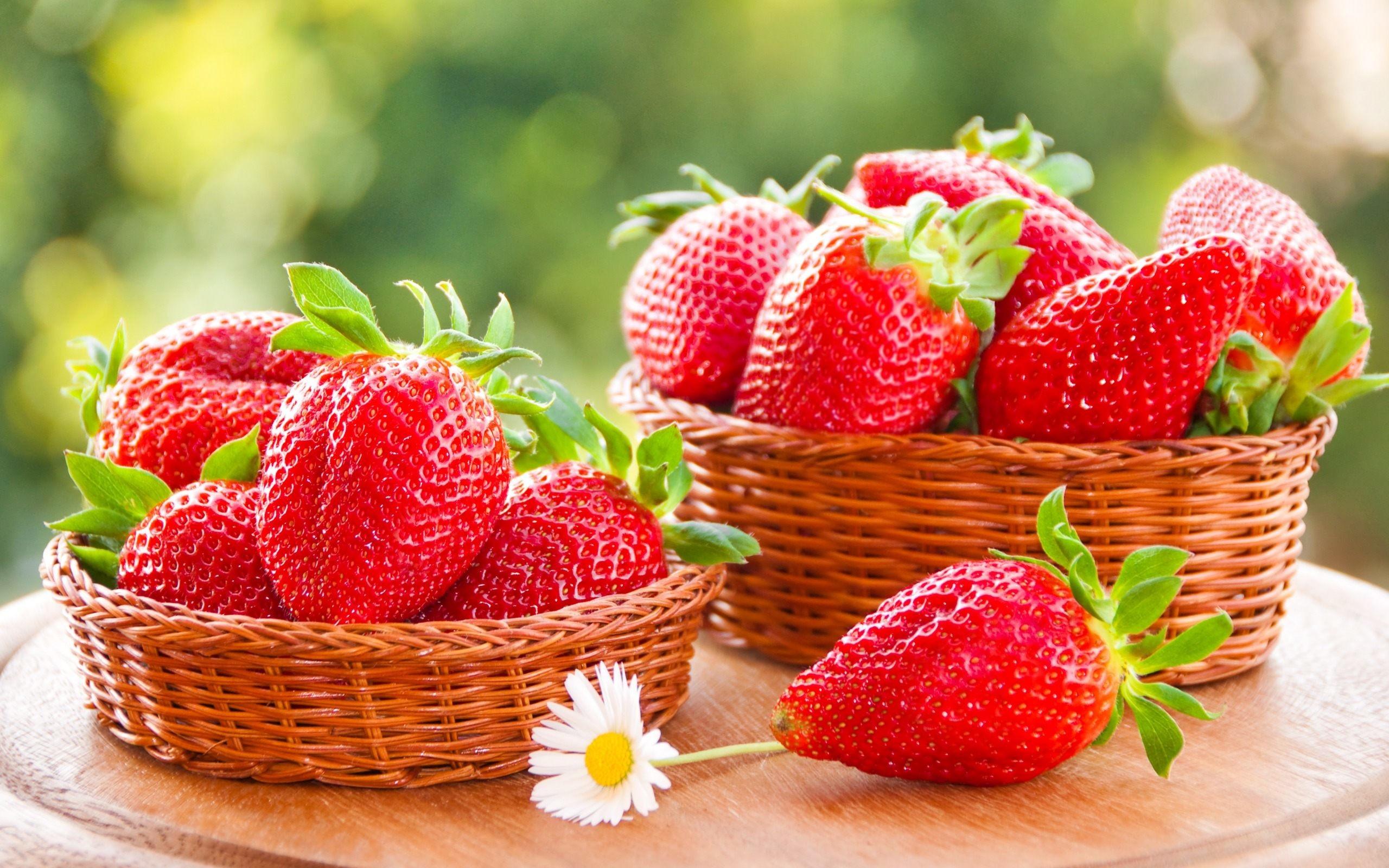 Fruit Basket Wallpaper 58 Images
