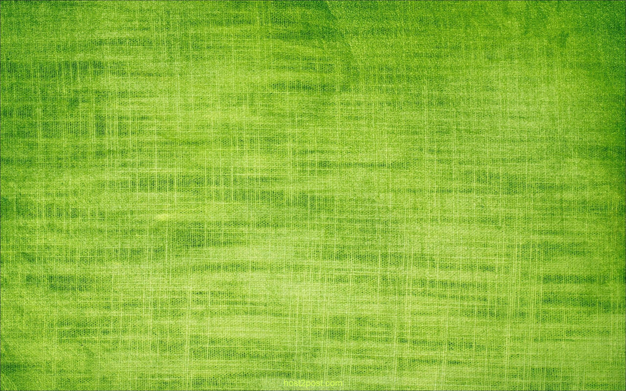 2560x1600 bright-green-rice-wallpapers-backgrounds