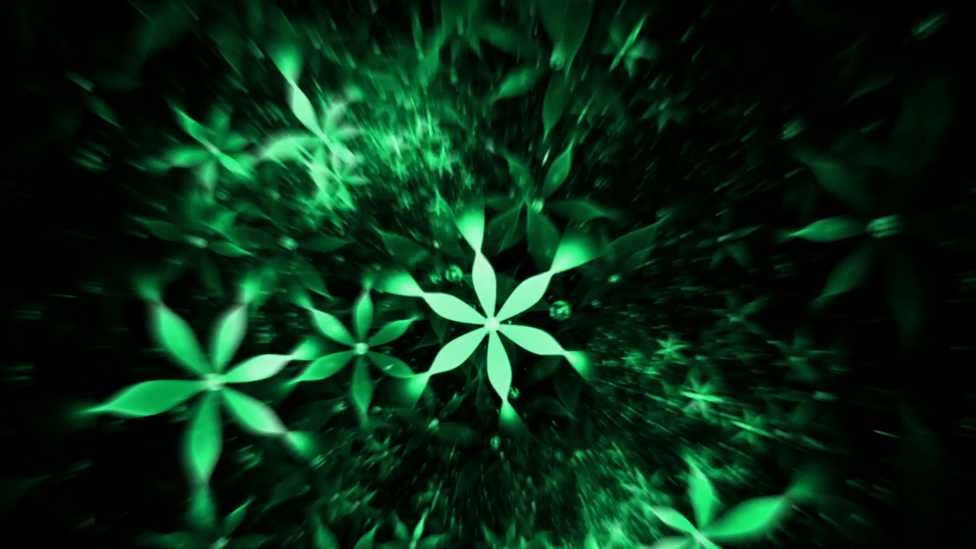 1920x1080 Whirlpool Of Green Flowers, Floral Background - floral background, green  flowers in circular motion