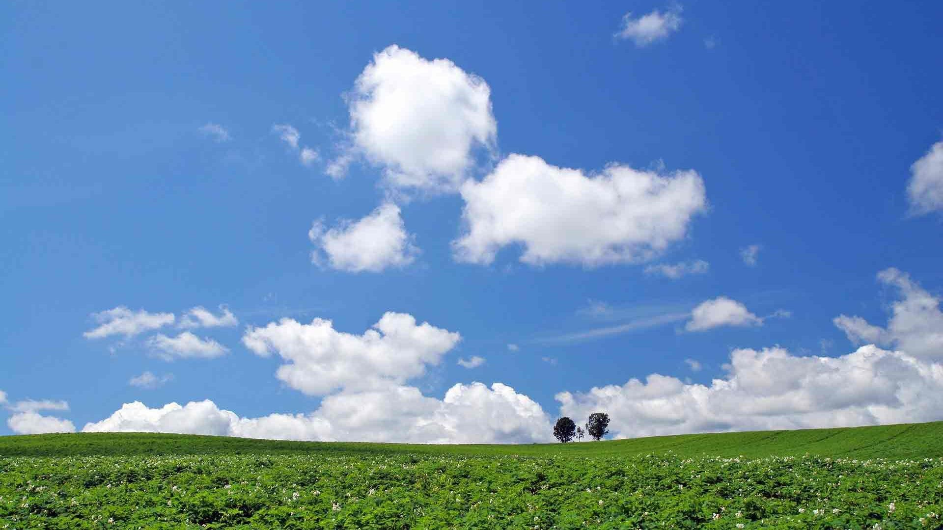 1920x1080 1440x9001280x800 · Hd white clouds in the blue sky scenic desktop  backgrounds