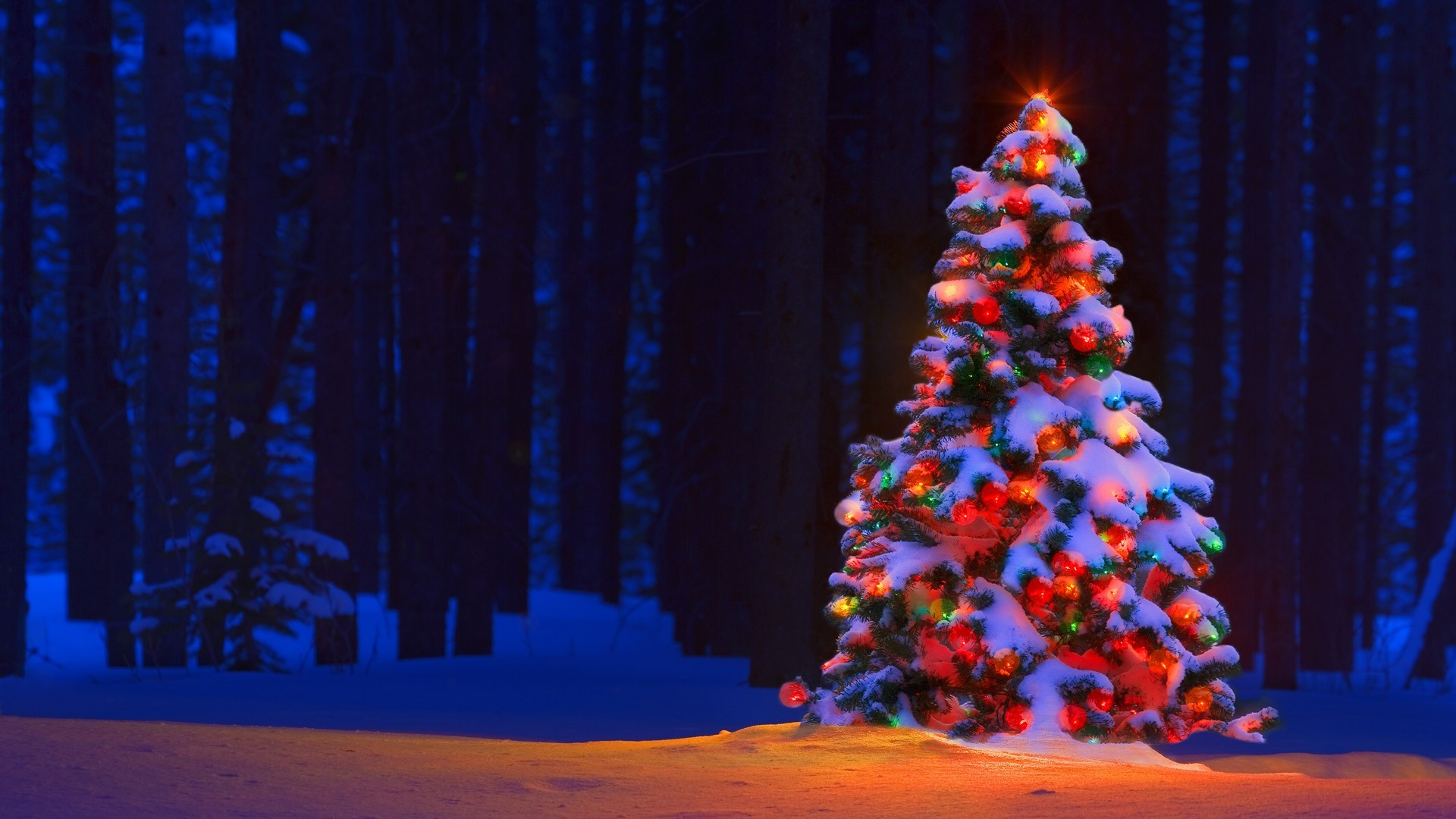 1920x1080 Christmas Lights Tree Desktop Backgrounds