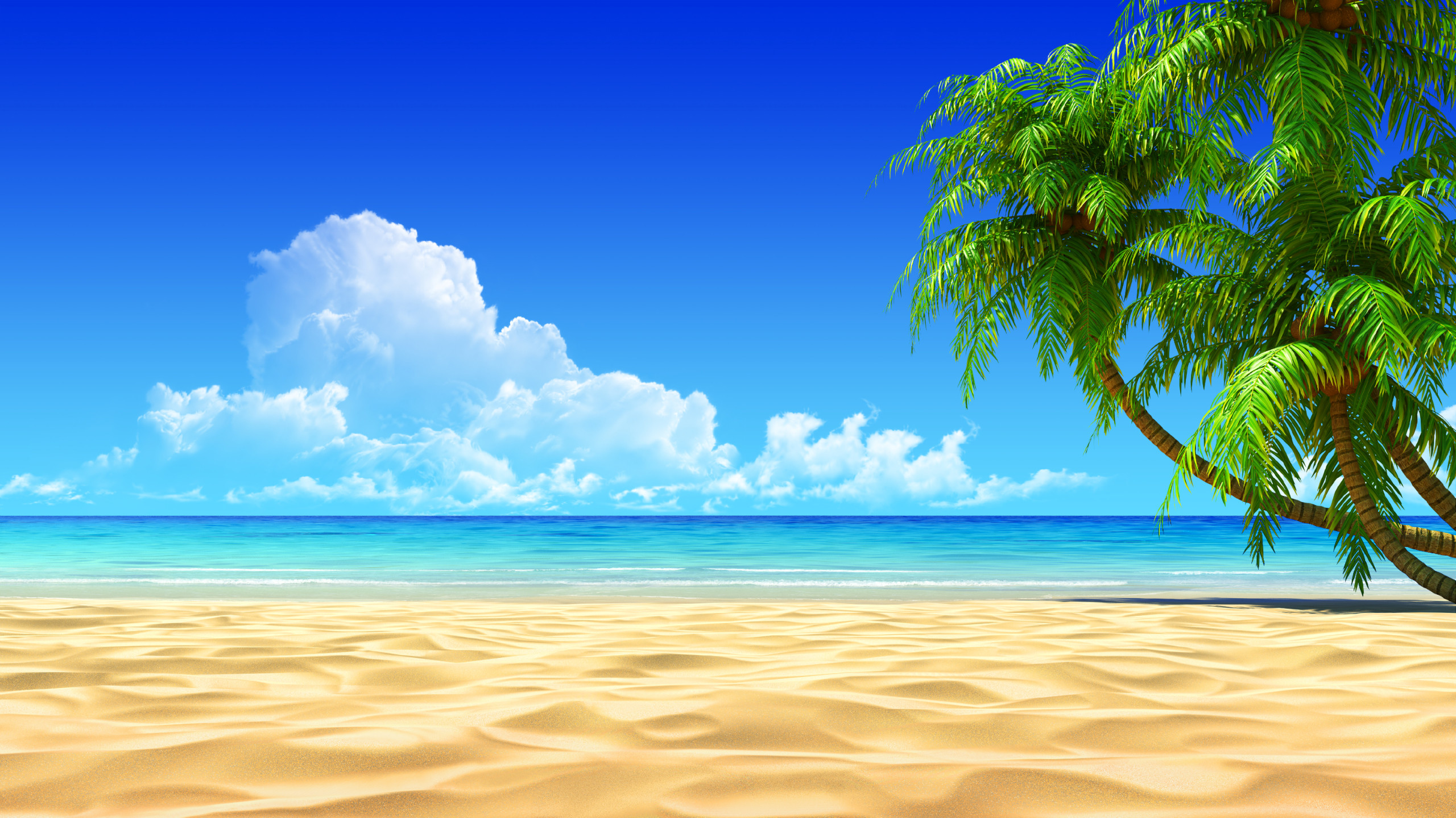 beach background wallpaper  61  images