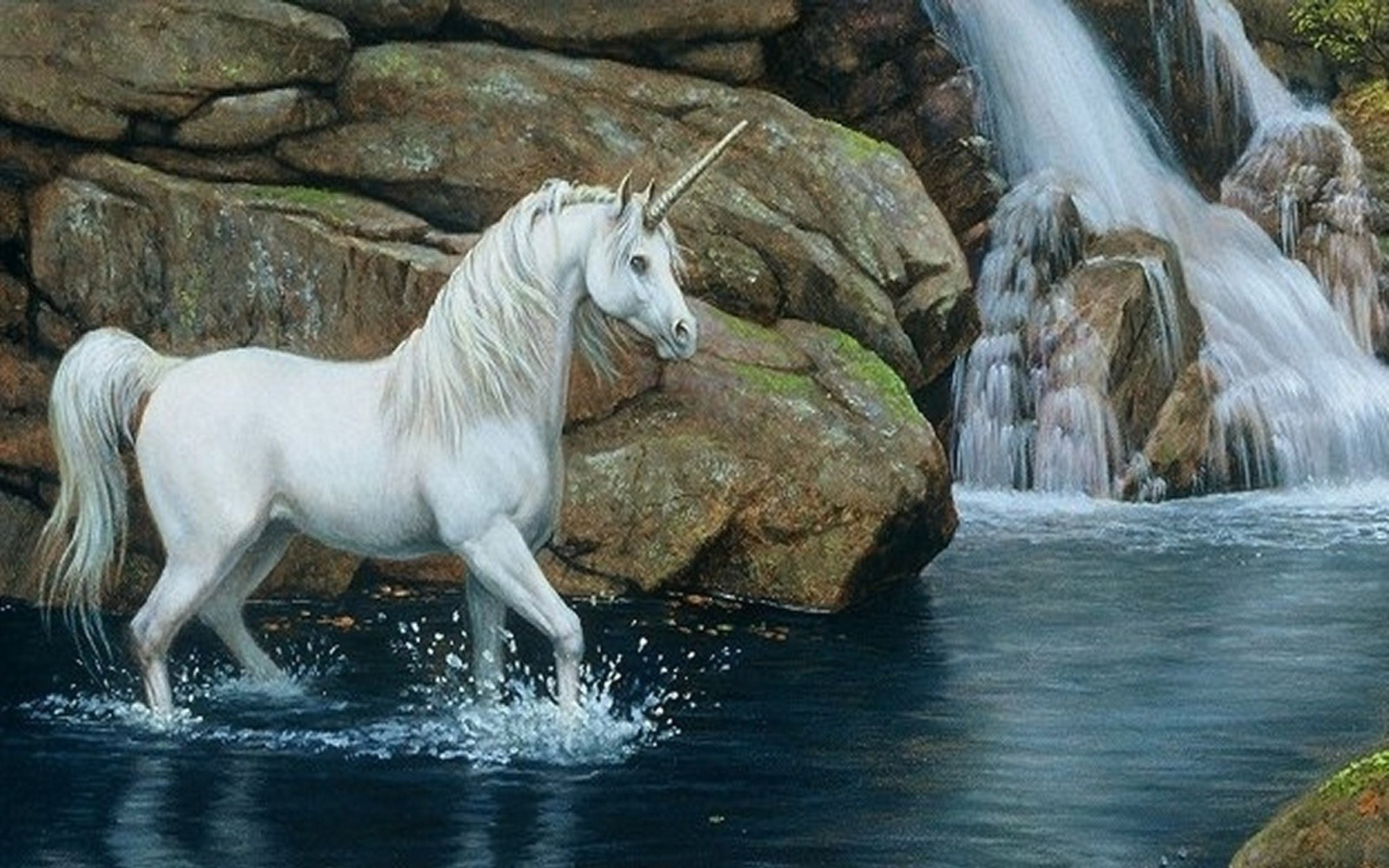wallpaper horse (66+ images)