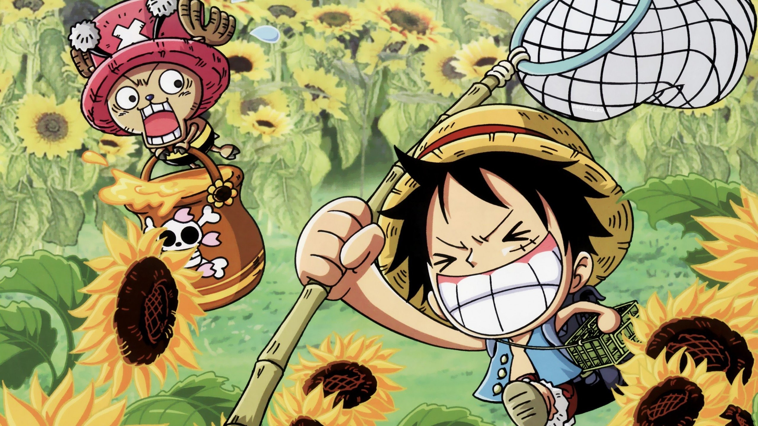 2560x1440 Chibi One Piece