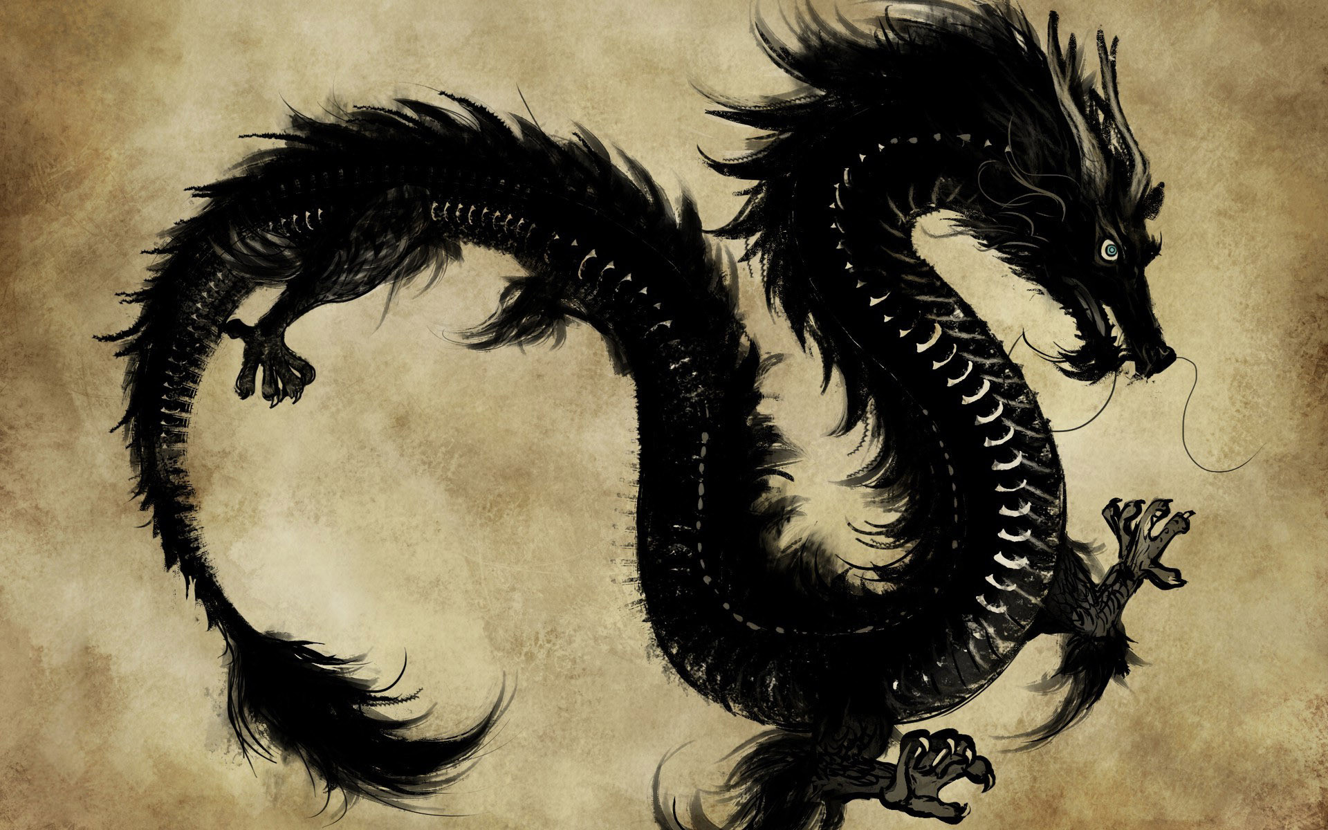 1920x1200 D Dragon Wallpaper Download D Dragon Wallpaper . Android | HD Wallpapers |  Pinterest | Wallpaper downloads, Hd wallpaper and Wallpapers android
