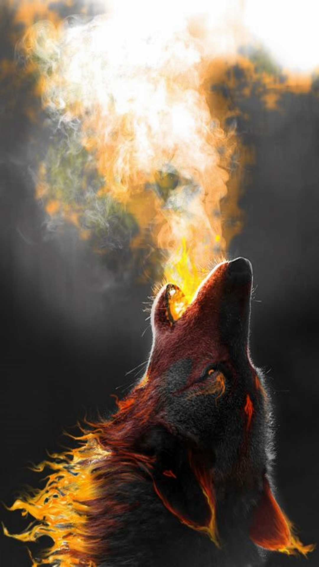 1080x1920 Wolf Howling More