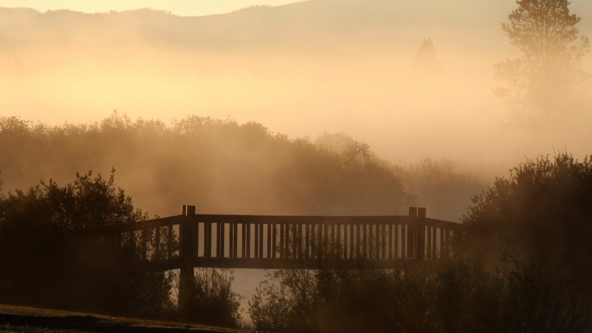 1920x1080 ... Next: Bridge in mist. Category: Nature wallpapers