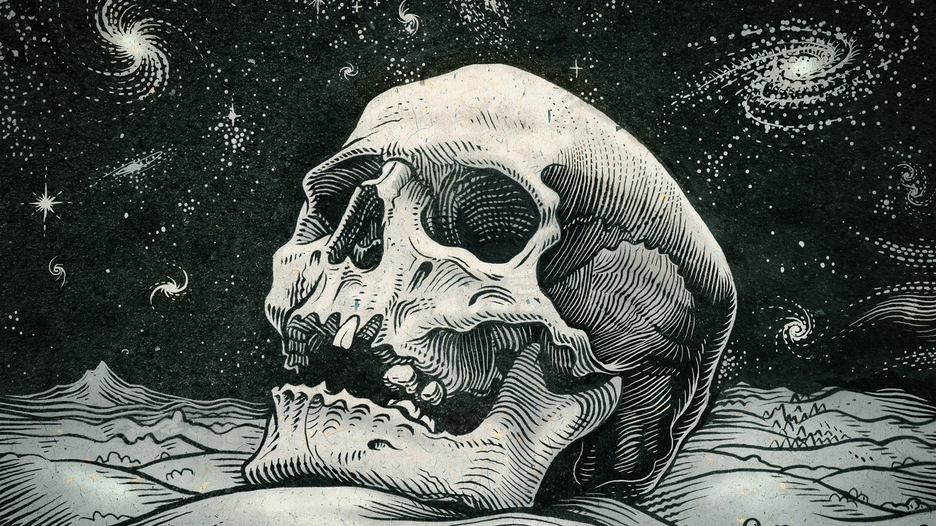 2560x1440 Skull And Roses