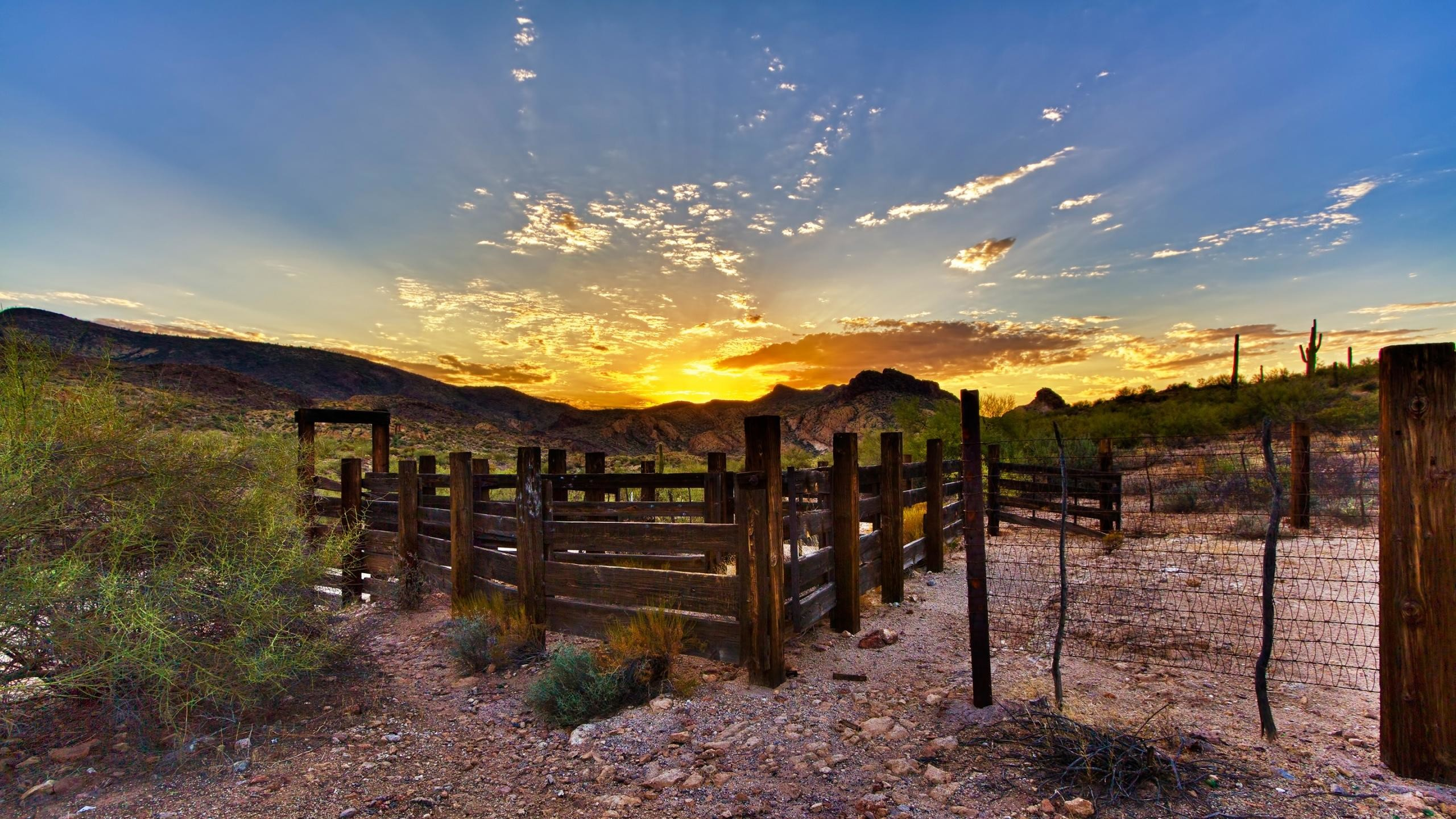 2560x1440 cattle ranch wallpaper - Google Search