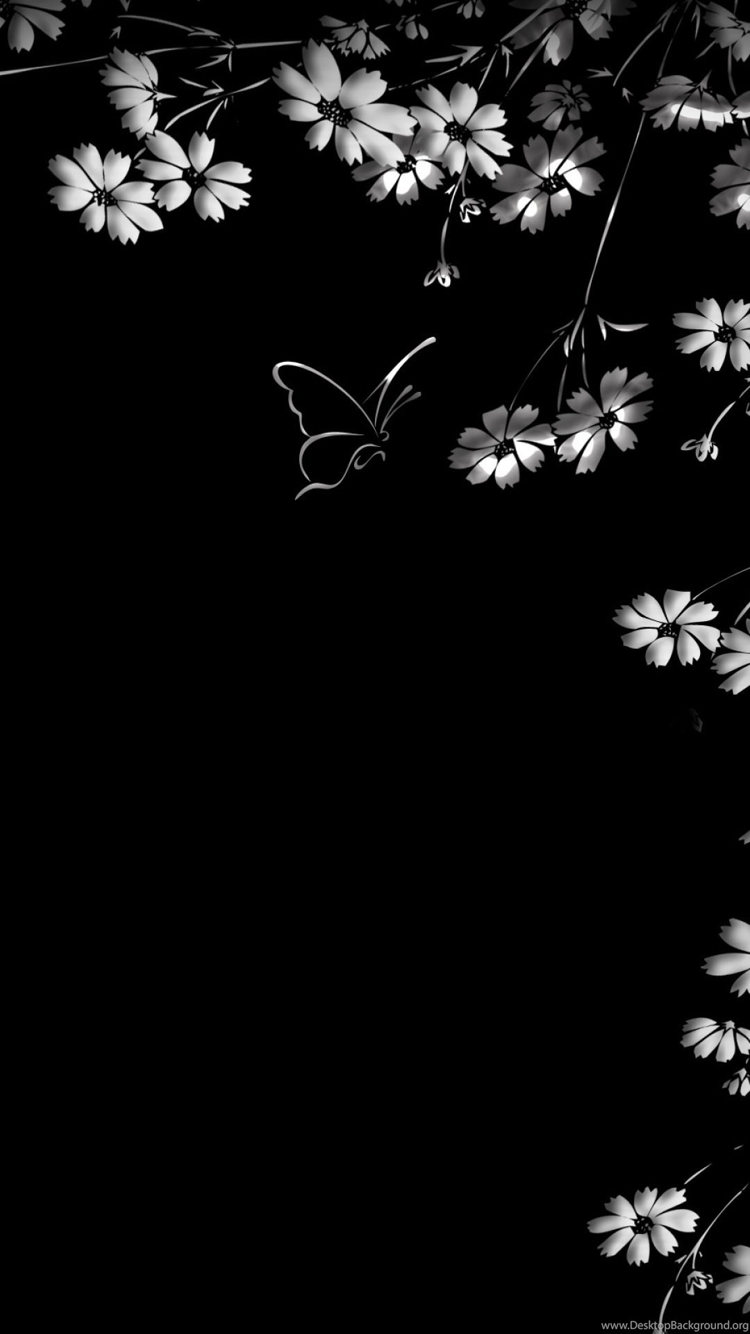 Black Butterfly Background Wallpaper 68 Images
