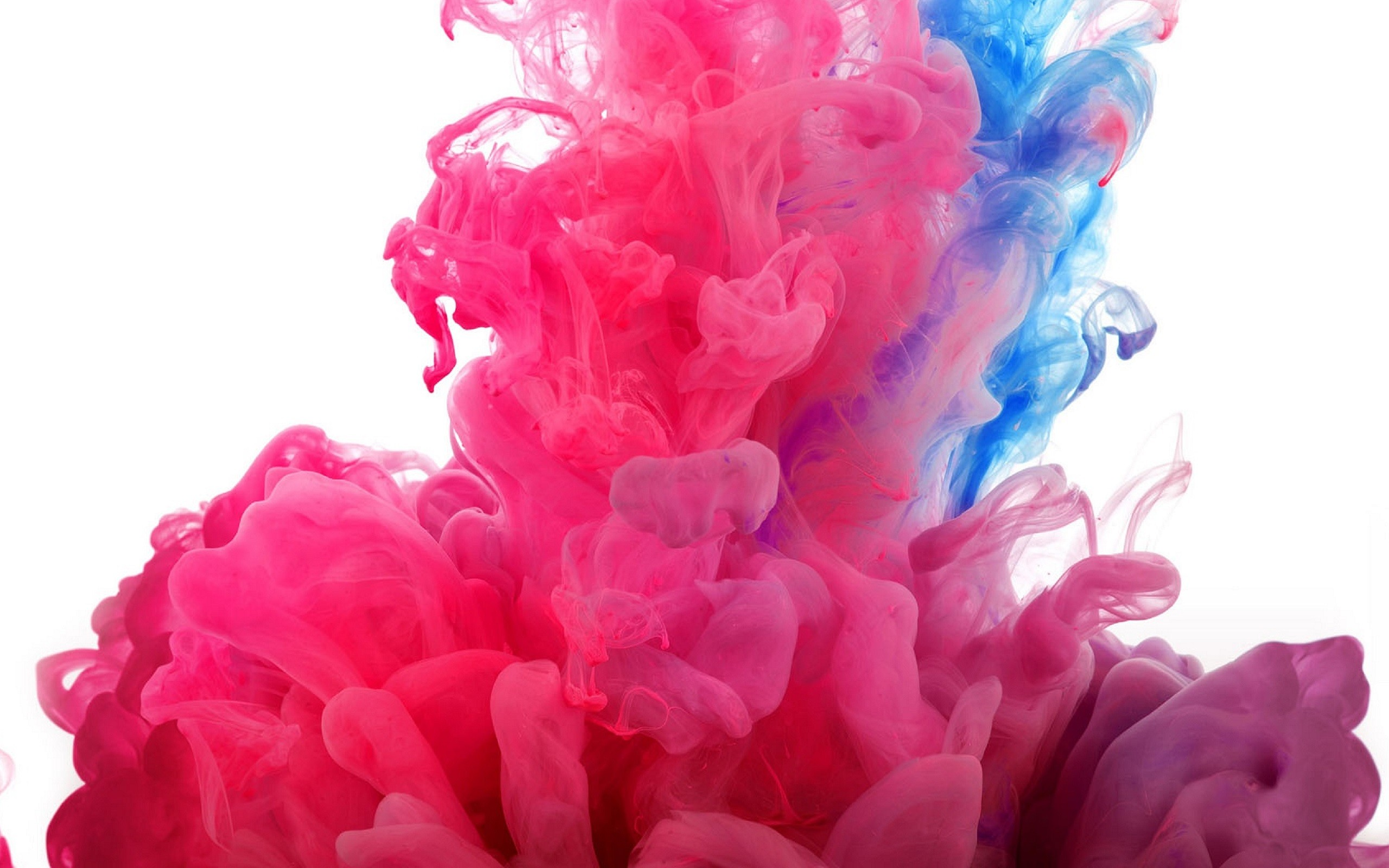 2560x1600 Pink and Blue Smoke Wallpaper Background 61851