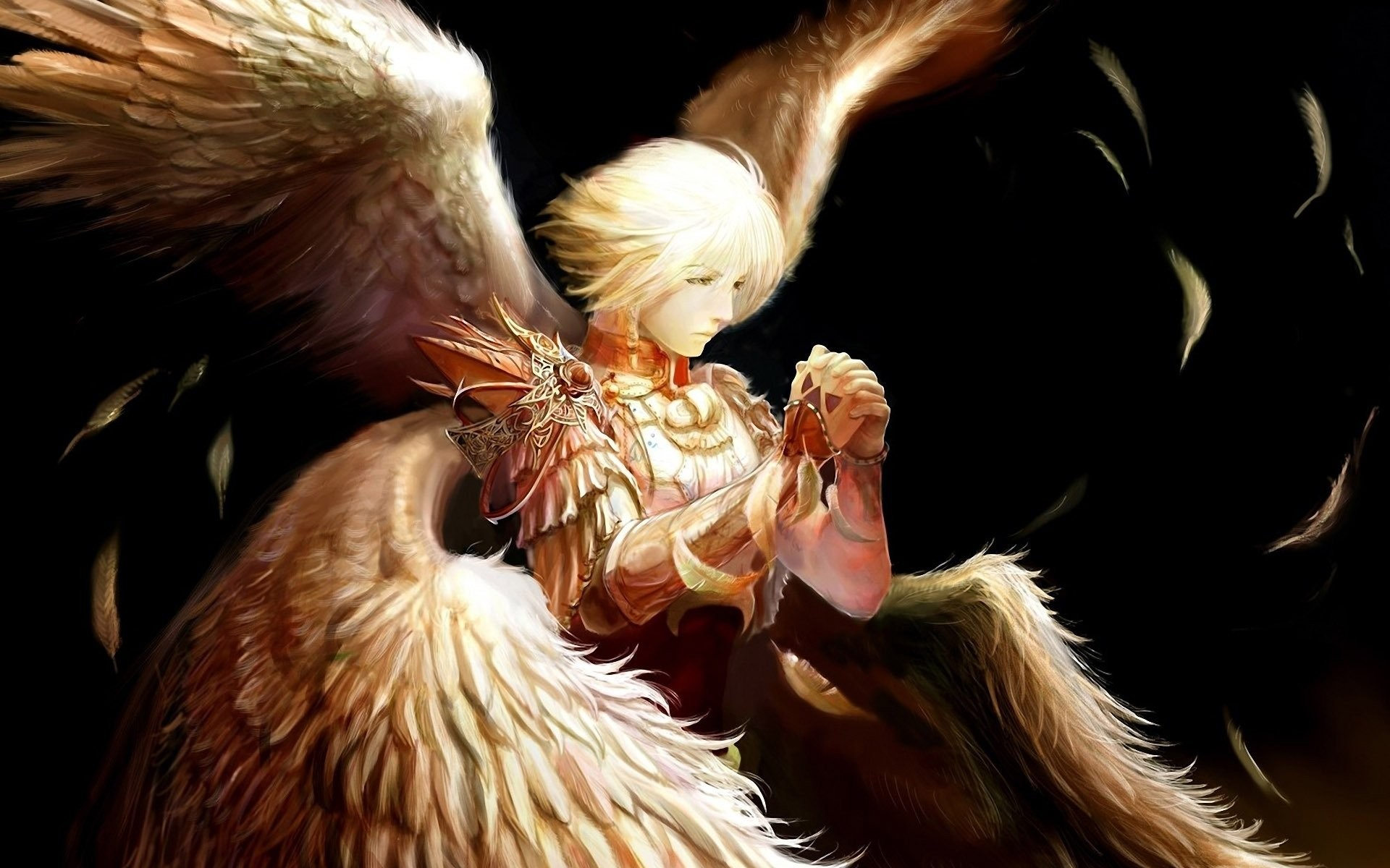1920x1200 Angel wings feathers warrior male wallpaper |  | 521187 |  WallpaperUP