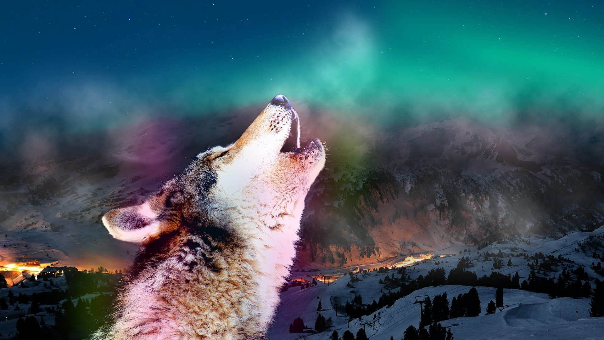 1920x1080 Wolf Tag - Auroras Animals Howling Wolf Aurora Wolves Sky Nature Wallpaper  Desktop for HD 16