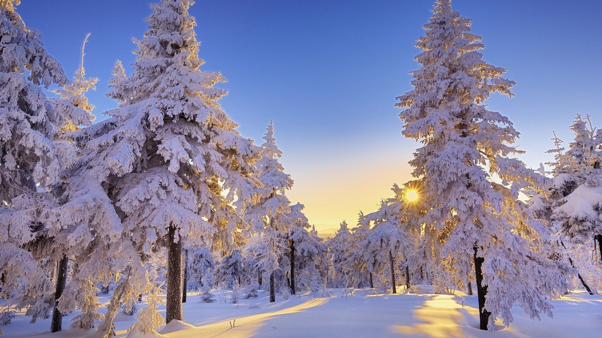 1920x1080 winter wonderland desktop wallpaper 1920×1080