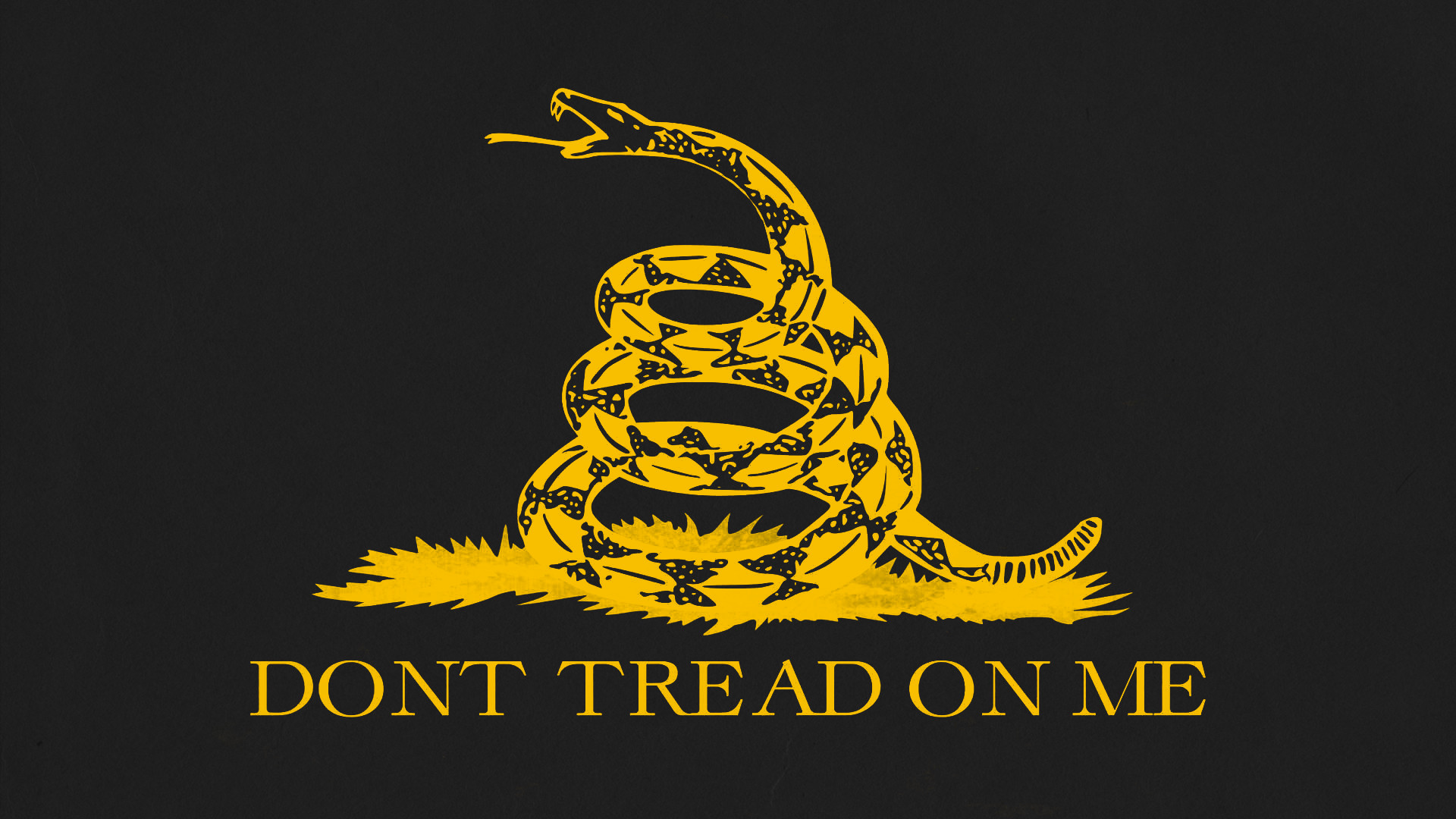 Dont Tread on Me Wallpaper (74+ images)