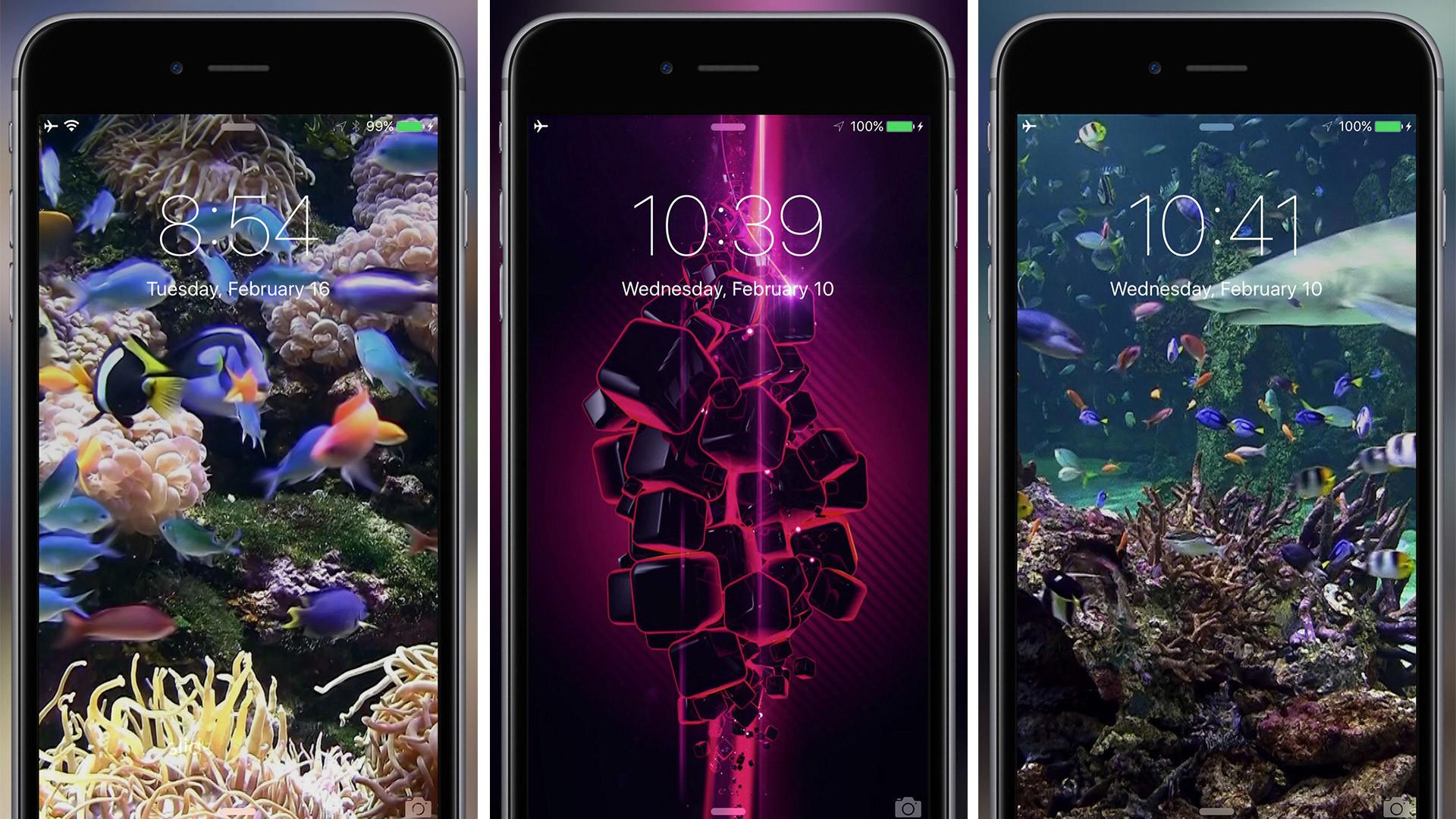 Iphone 8 plus portrait hintergrund schwarz