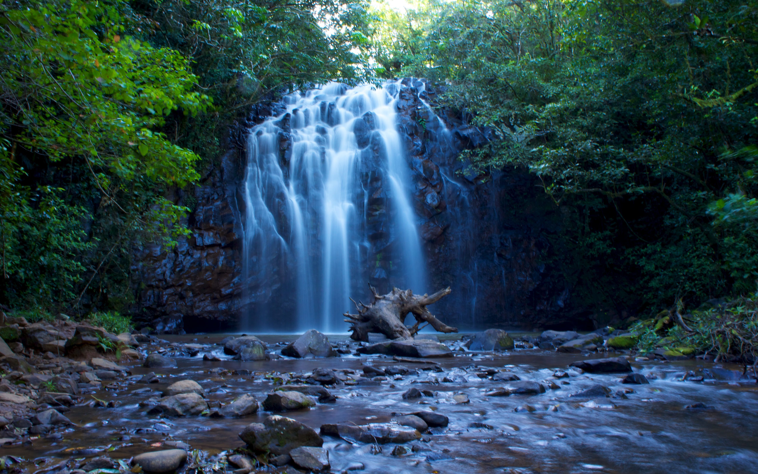 2560x1600 Free Green Nature Tropical Waterfall, earth, landscape, nature, city,  mountain,