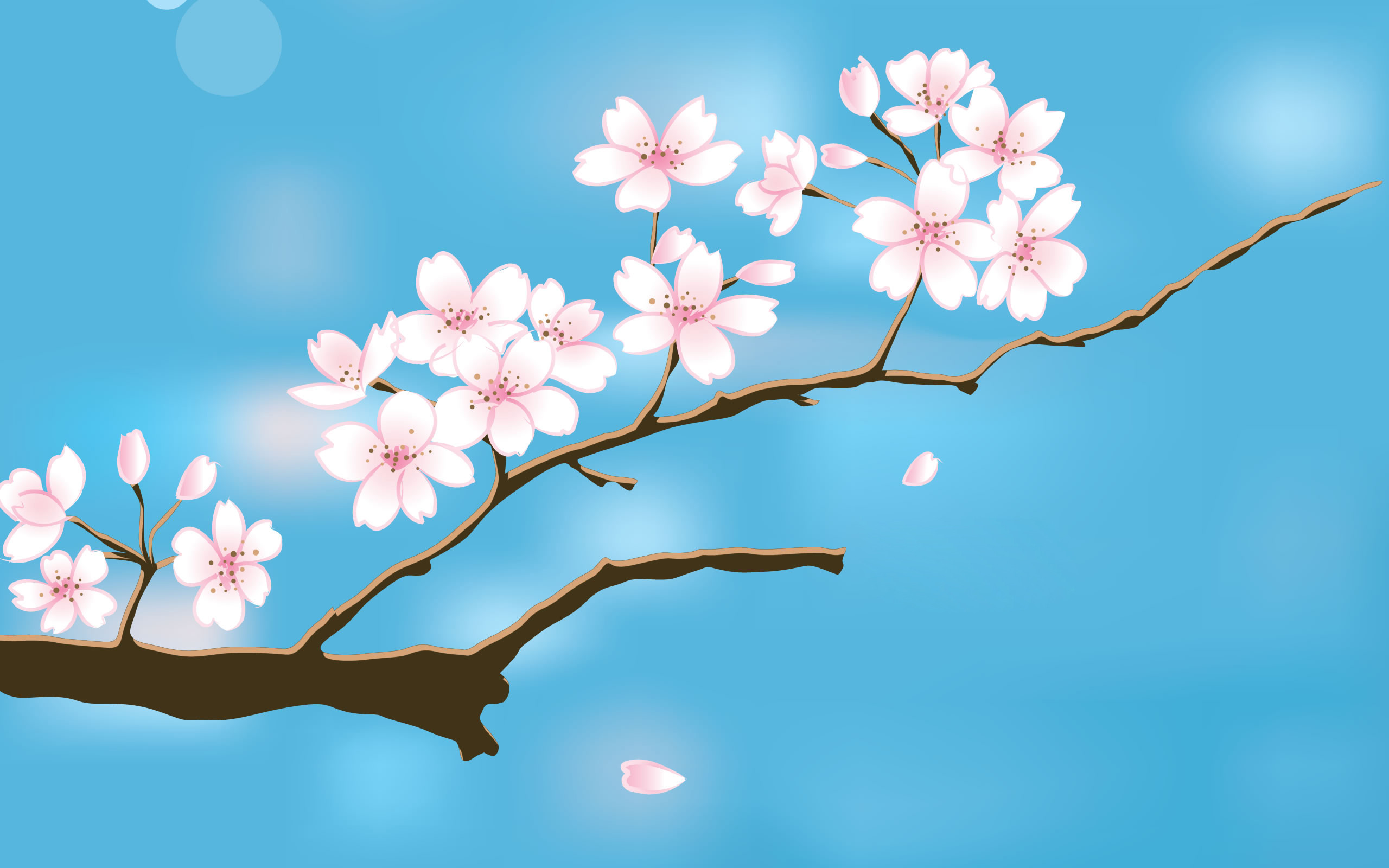 2560x1600 HD free desktop wallpaper spring flowers new.
