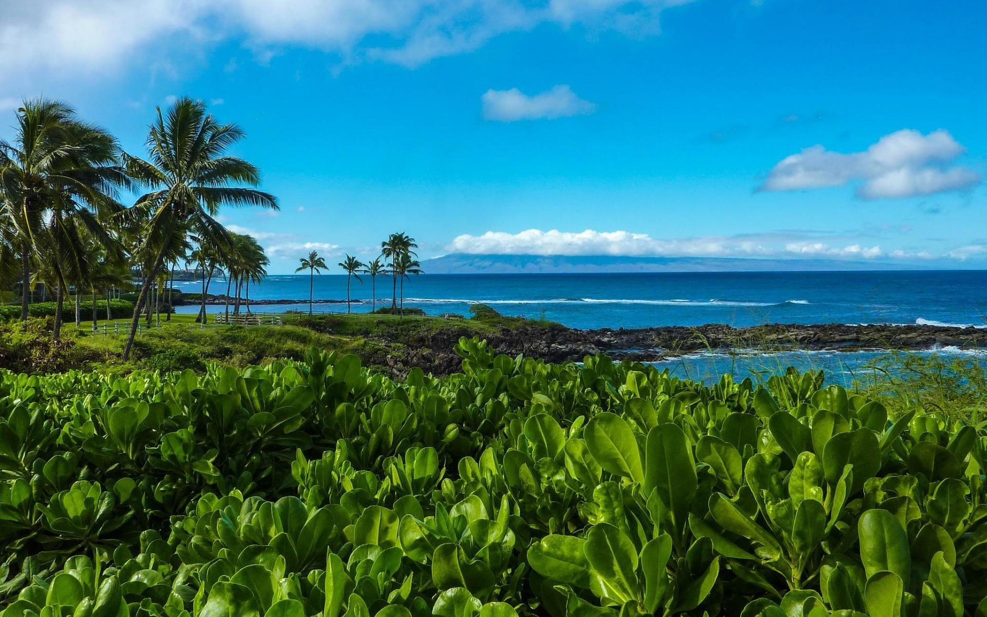 1920x1200 Hawaii Beach Sea Trail Coastal Kapalua Bigest Images