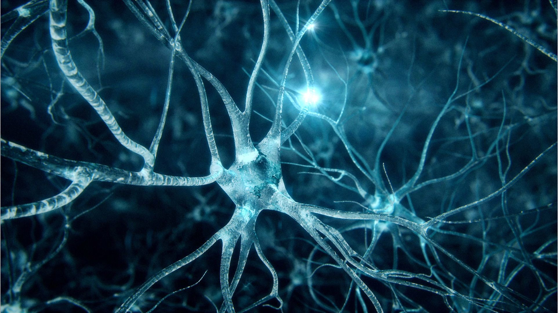 neuron wallpapers 52 images