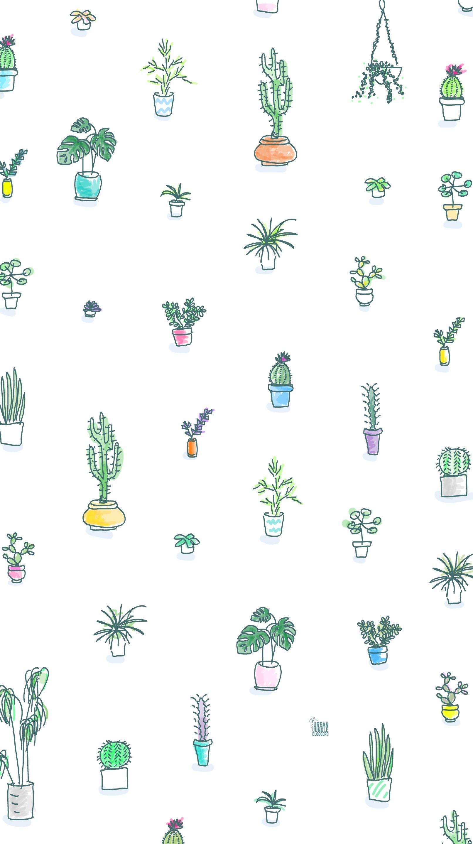 Cute Summer Wallpaper 59 Images