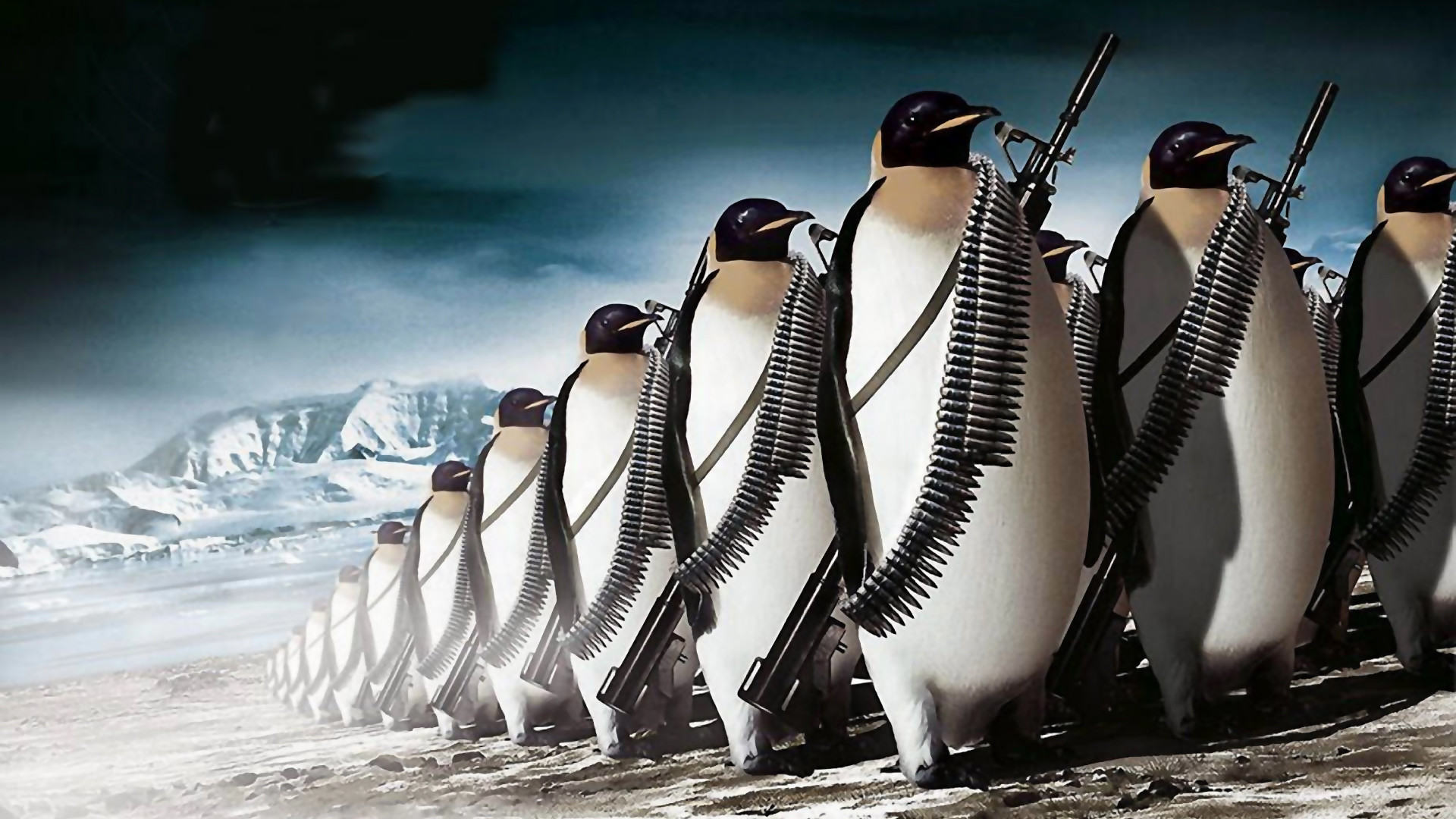 1920x1080 penguins, wallpaper, war, background, paper, images, wallpapers .
