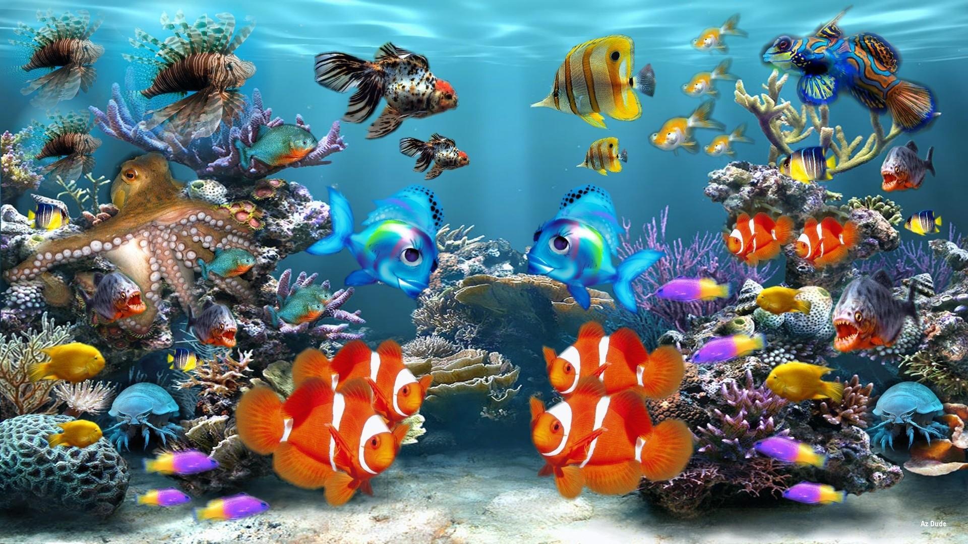 1920x1080 Hd Free Live Fish Wallpaper Moving 0 HTML Code Fonds