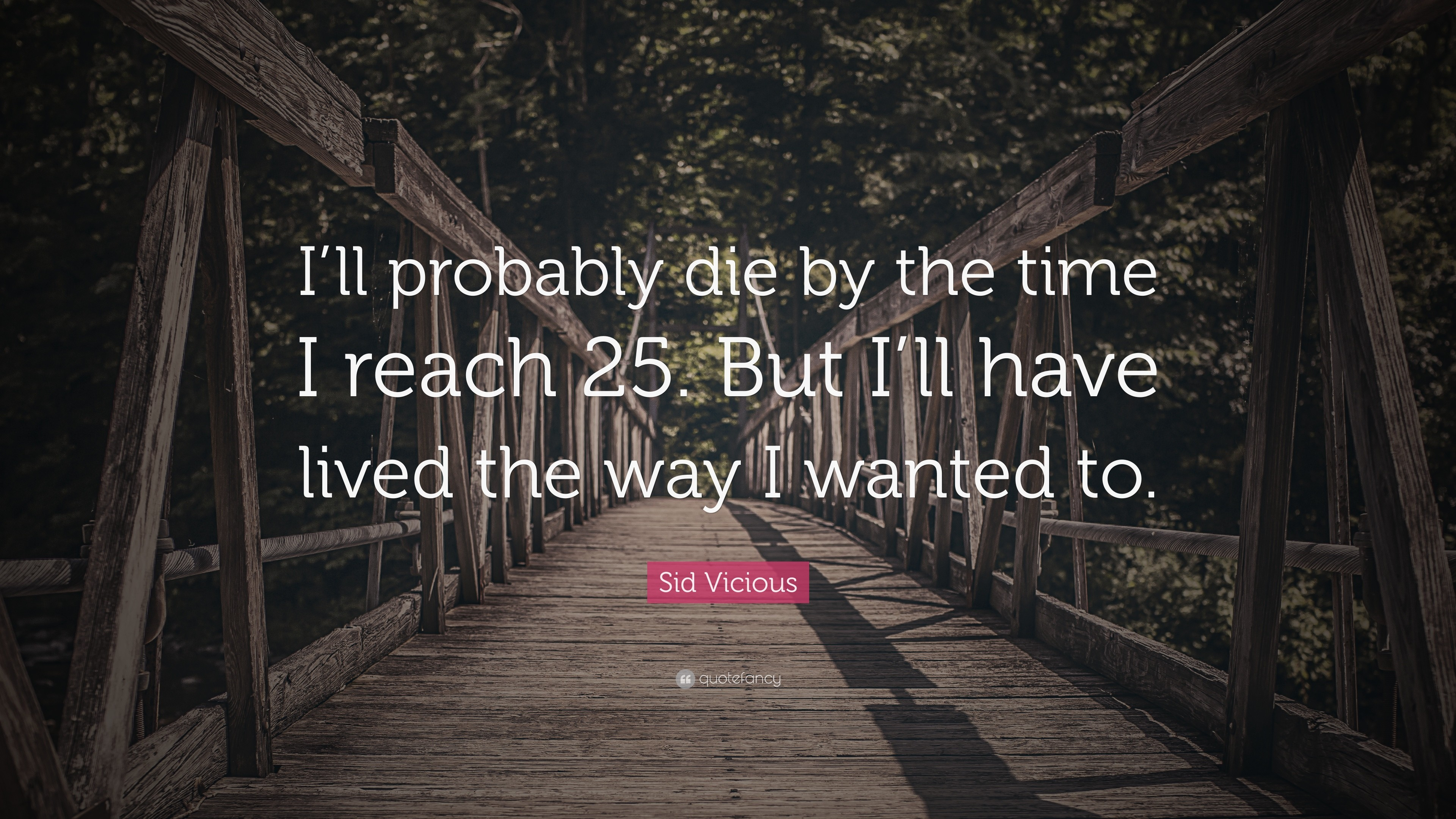 "3840x2160 Sid Vicious Quote: ""I'll probably die by the time I reach 25"
