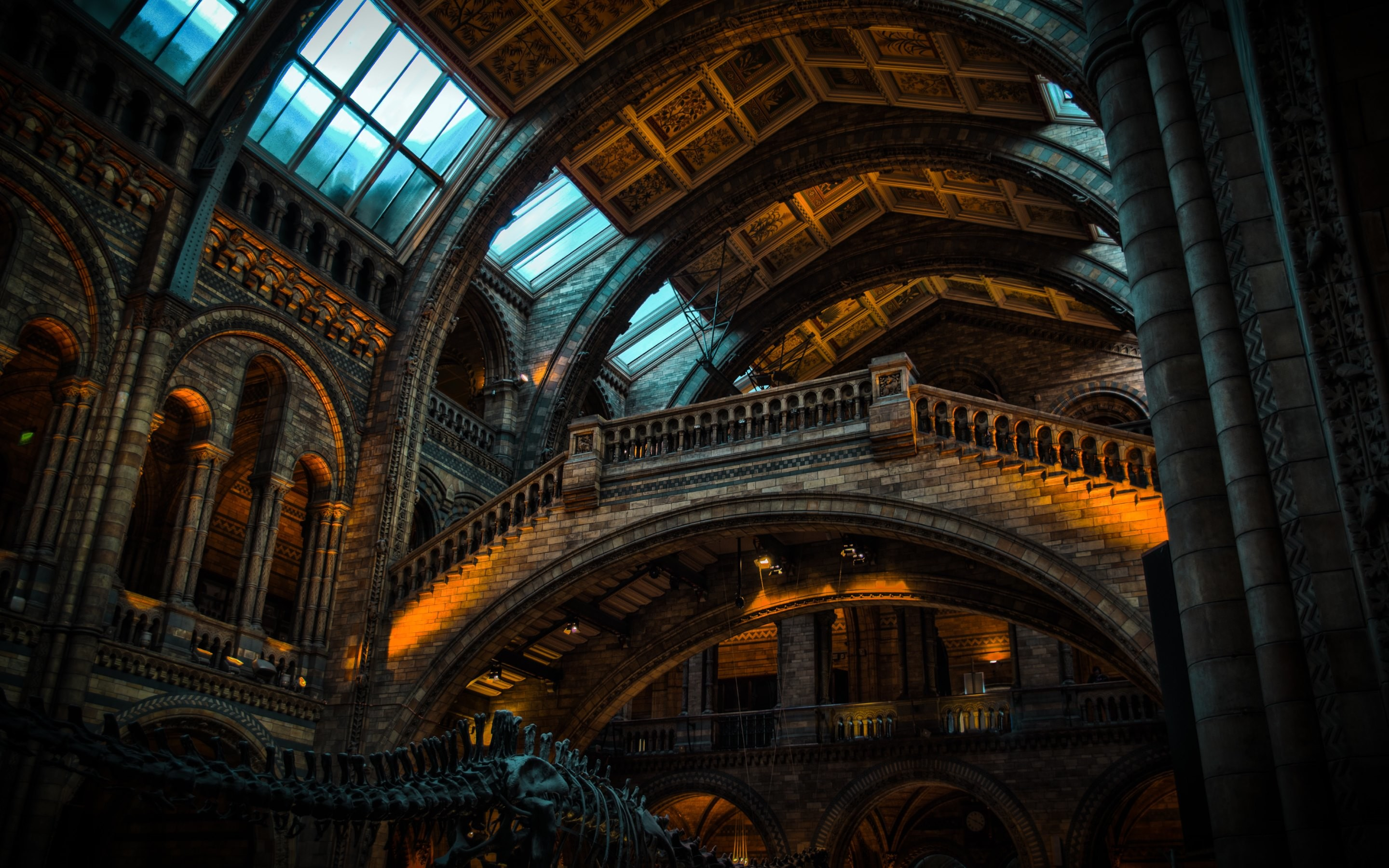 architecture museum history natural london building 4k hd wallpapers historical desktop light background night gothic place lighting inside basilica metropolis
