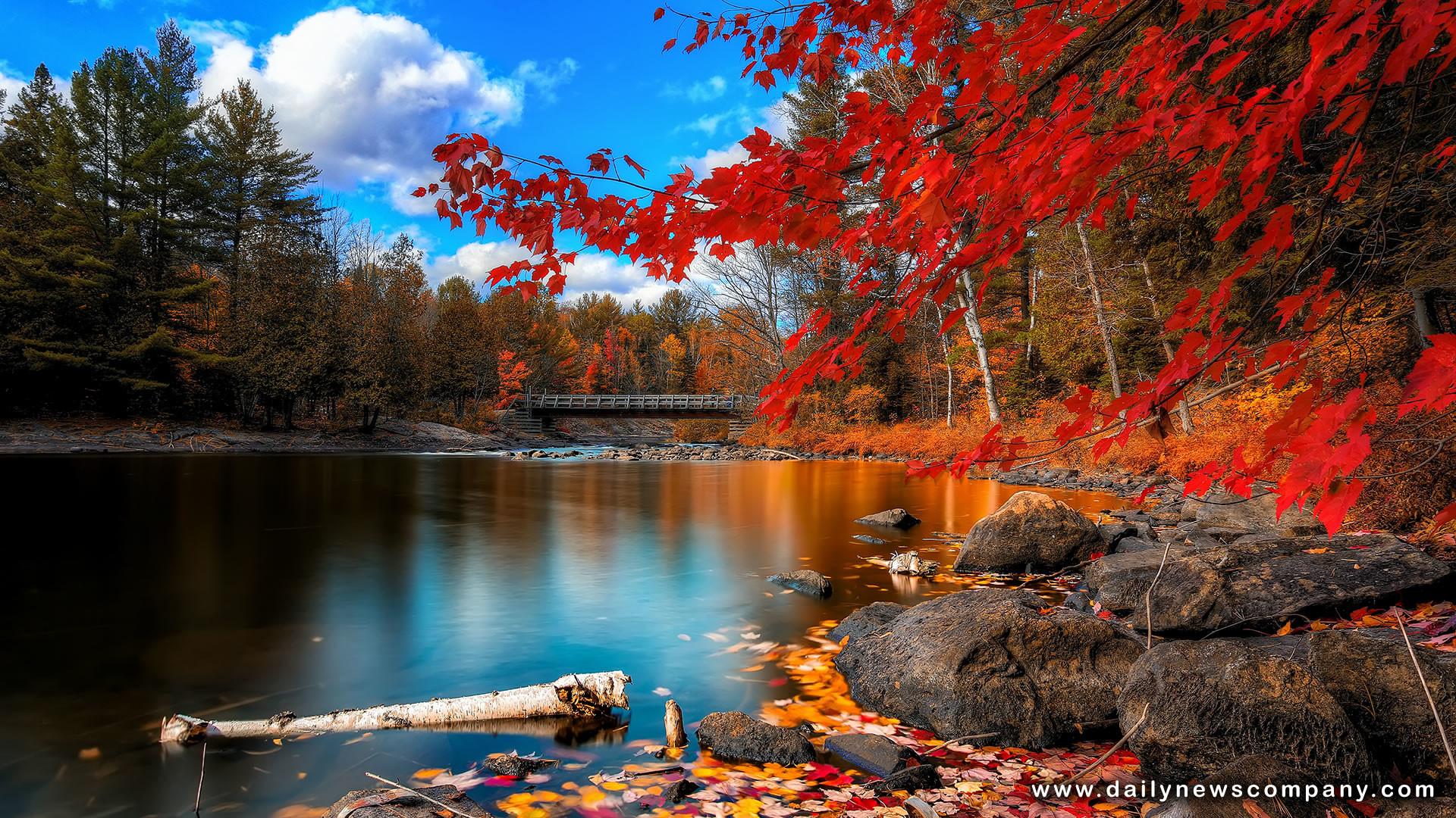 fall hd widescreen wallpaper (58+ images)