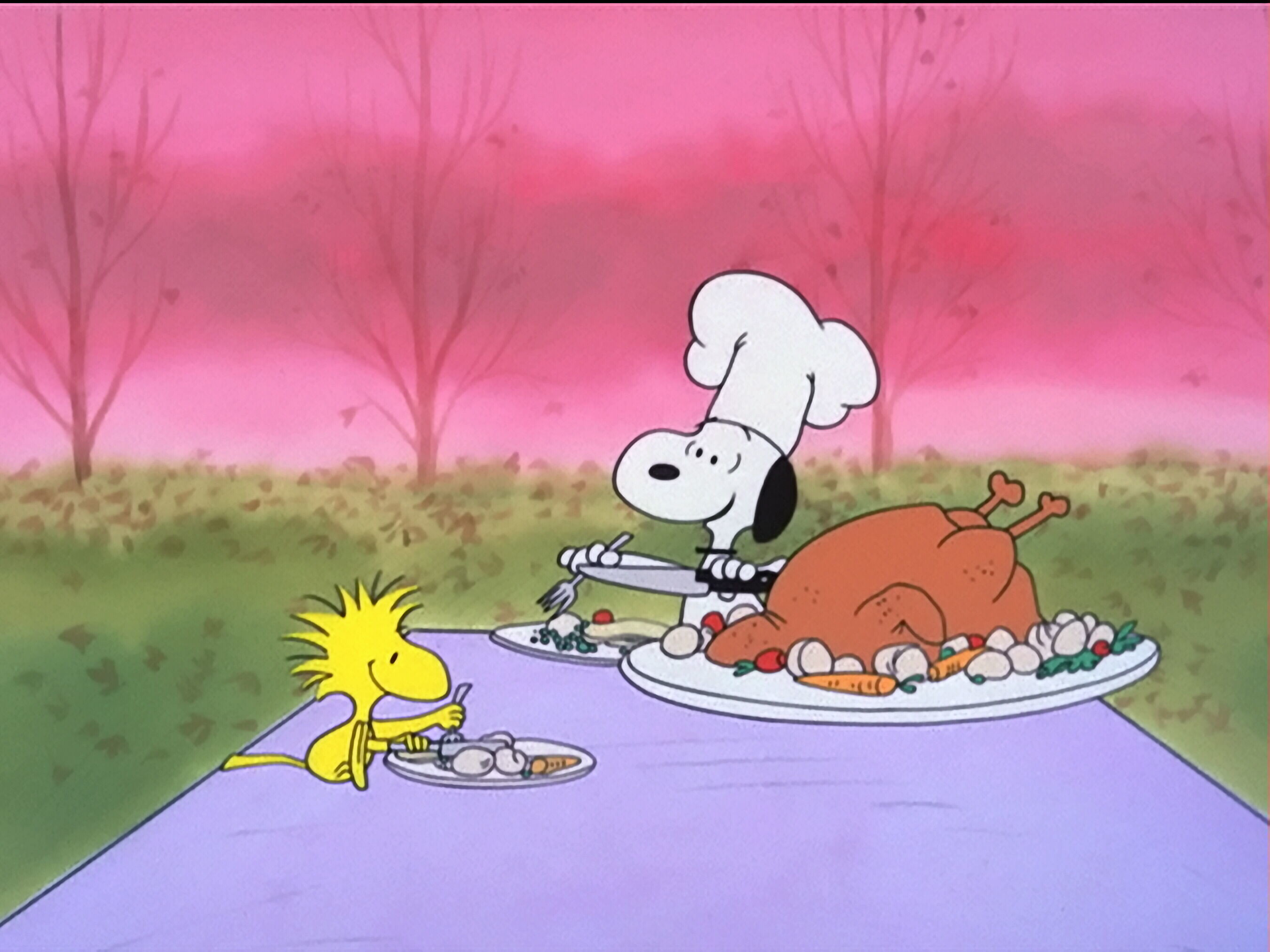 2700x2025 A Charlie Brown Thanksgiving