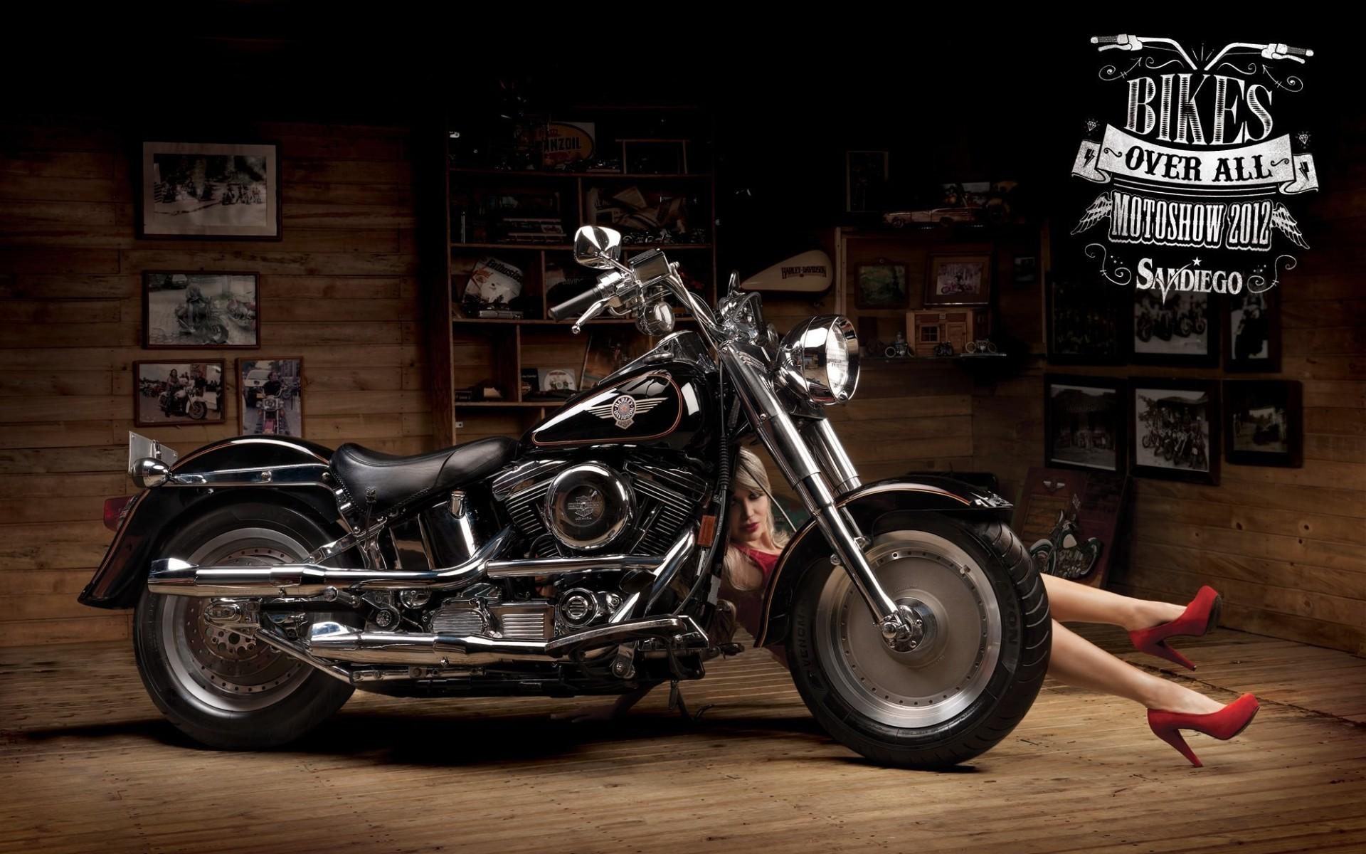 Harley davidson wallpapers and screensavers 80 images 1920x1200 harley davidson wallpaper hd widescreen voltagebd Images