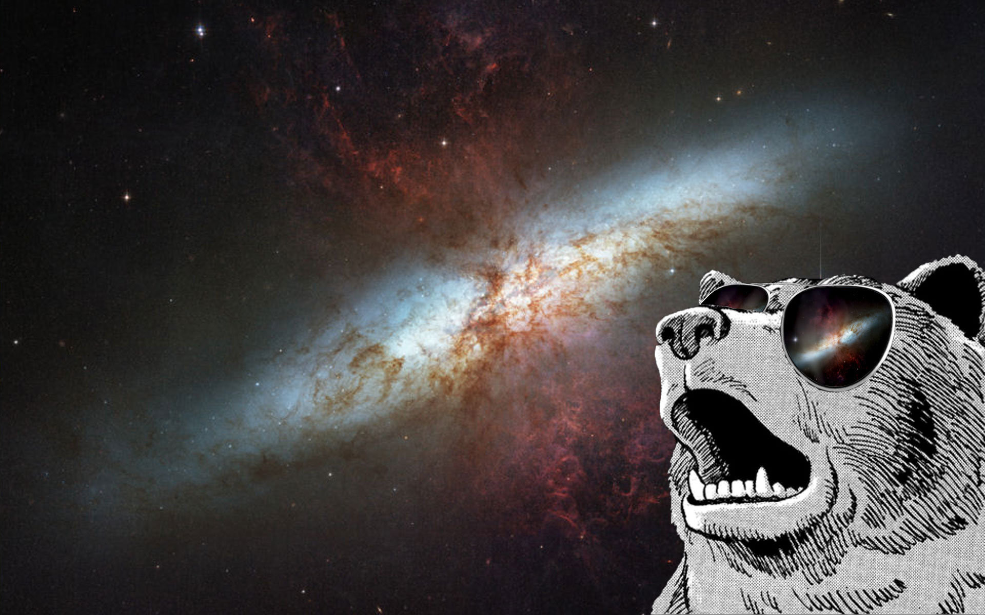 dank meme wallpapers space doge grizzly hd outer bears memes definition 1080 animals desktop background resolution epic 1920 px rare