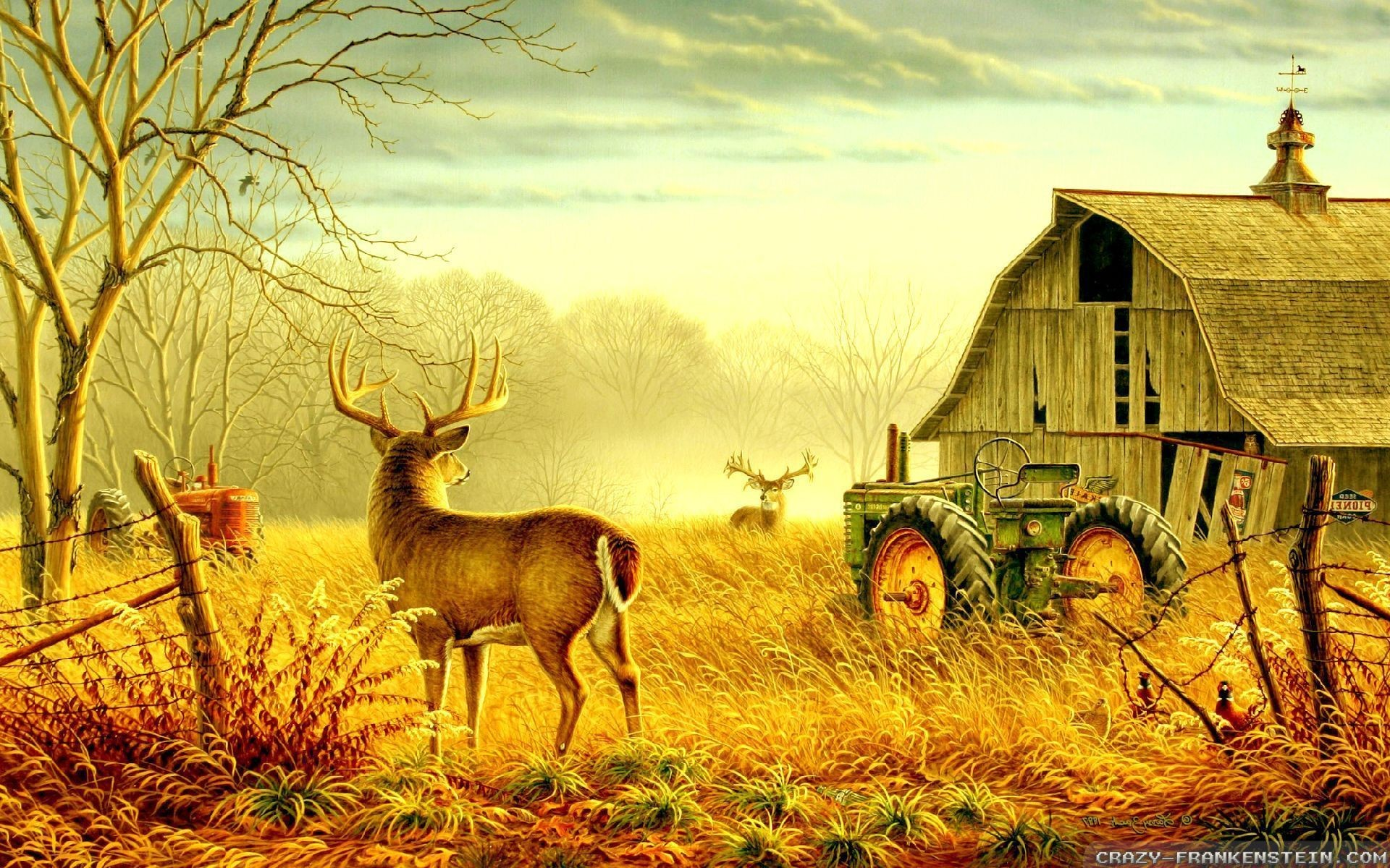 Fall Country Scenes Wallpaper 29 Images