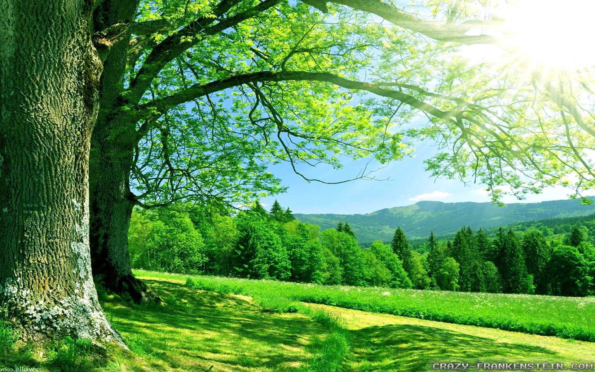 Nature Wallpapers 1366x768 58 Images
