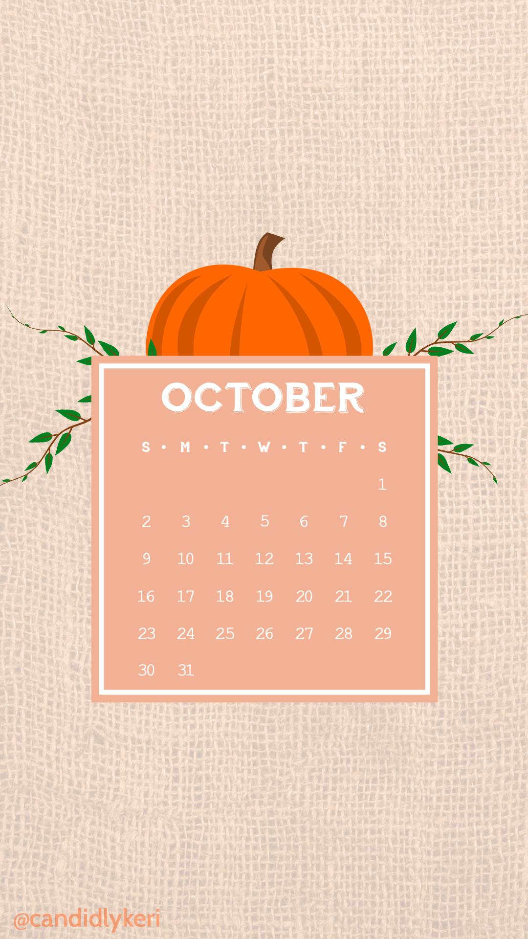 1080x1920 Cute Cartoon Pumpkin Vector Burlap Sack October Calendar 2016  Wallpaper You Can Download For Free