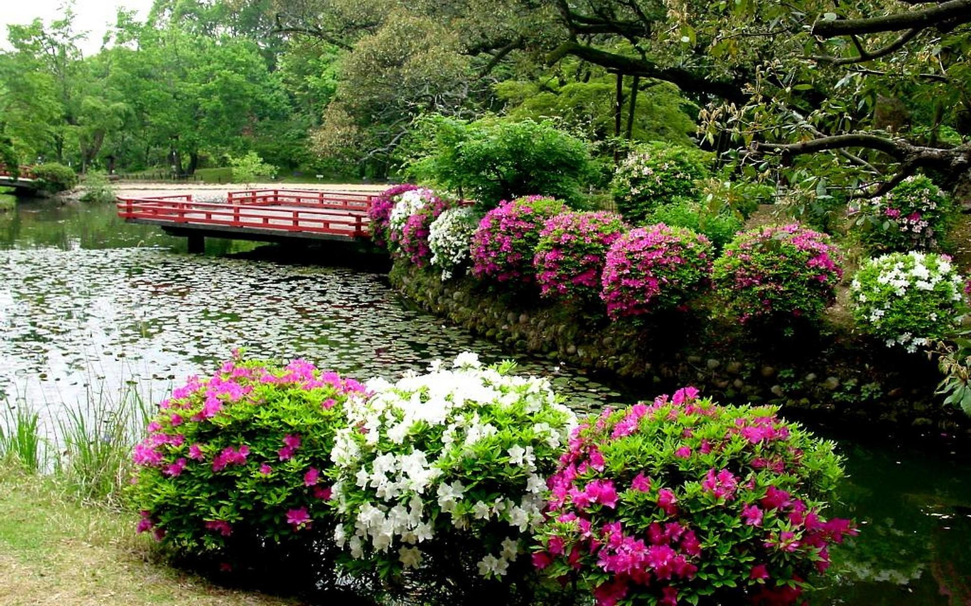 1920x1200 Japanese Garden At Huntington Library And Botanical Gardens In San Marino Ca