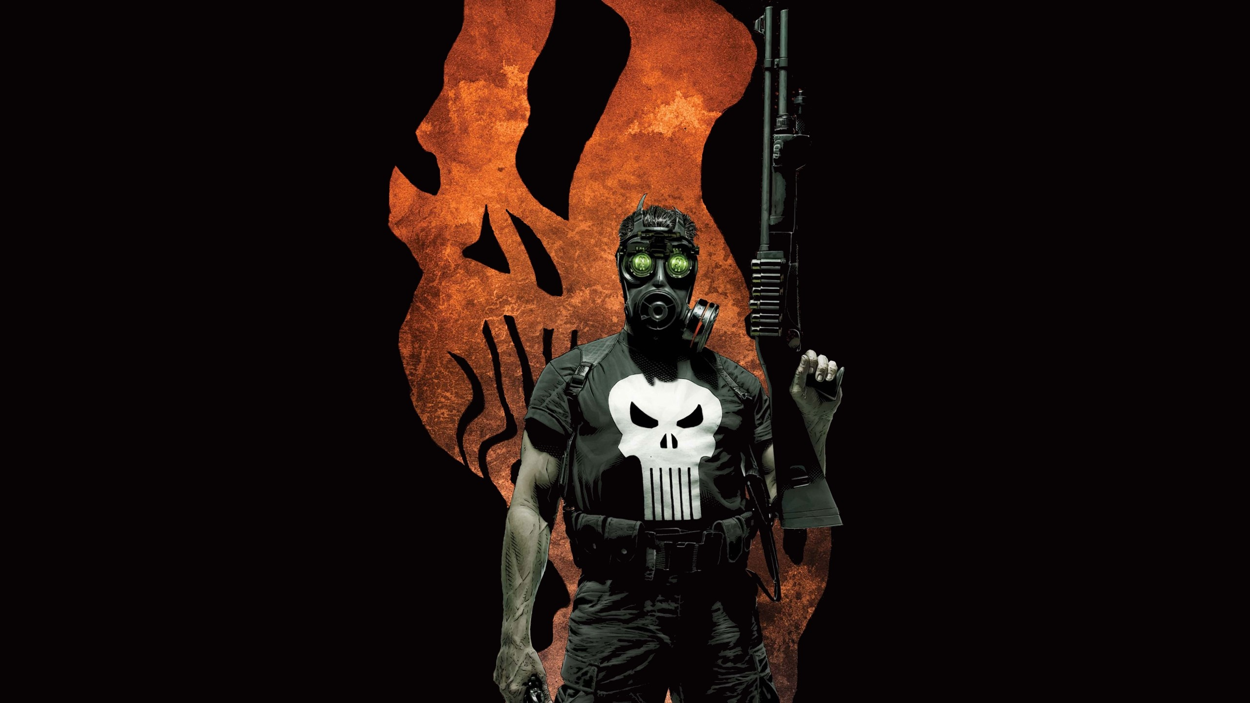 2560x1440 HD Wallpaper | Background ID:519503.  Comics The Punisher